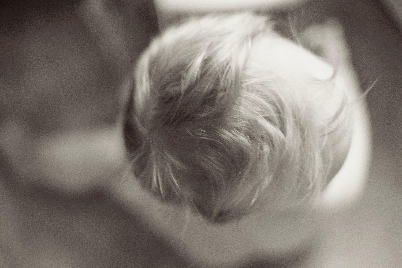 portrait_children_natural_portrait_family (18).jpg
