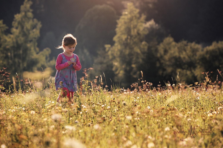 Dětský portrét holčičky na louce plné odkvetlých pampelišek u západu slunce v parku v Brně.