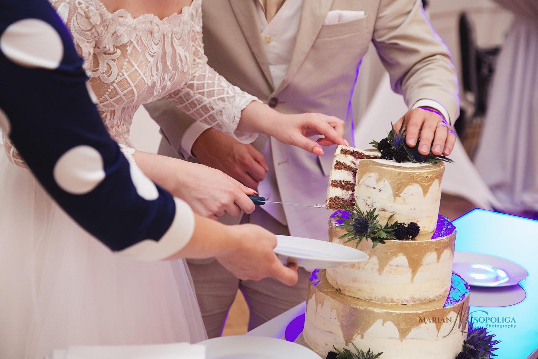 59reportazni-svatebni-fotografie-ze-svatby-v-dome-u-parku-v-olom