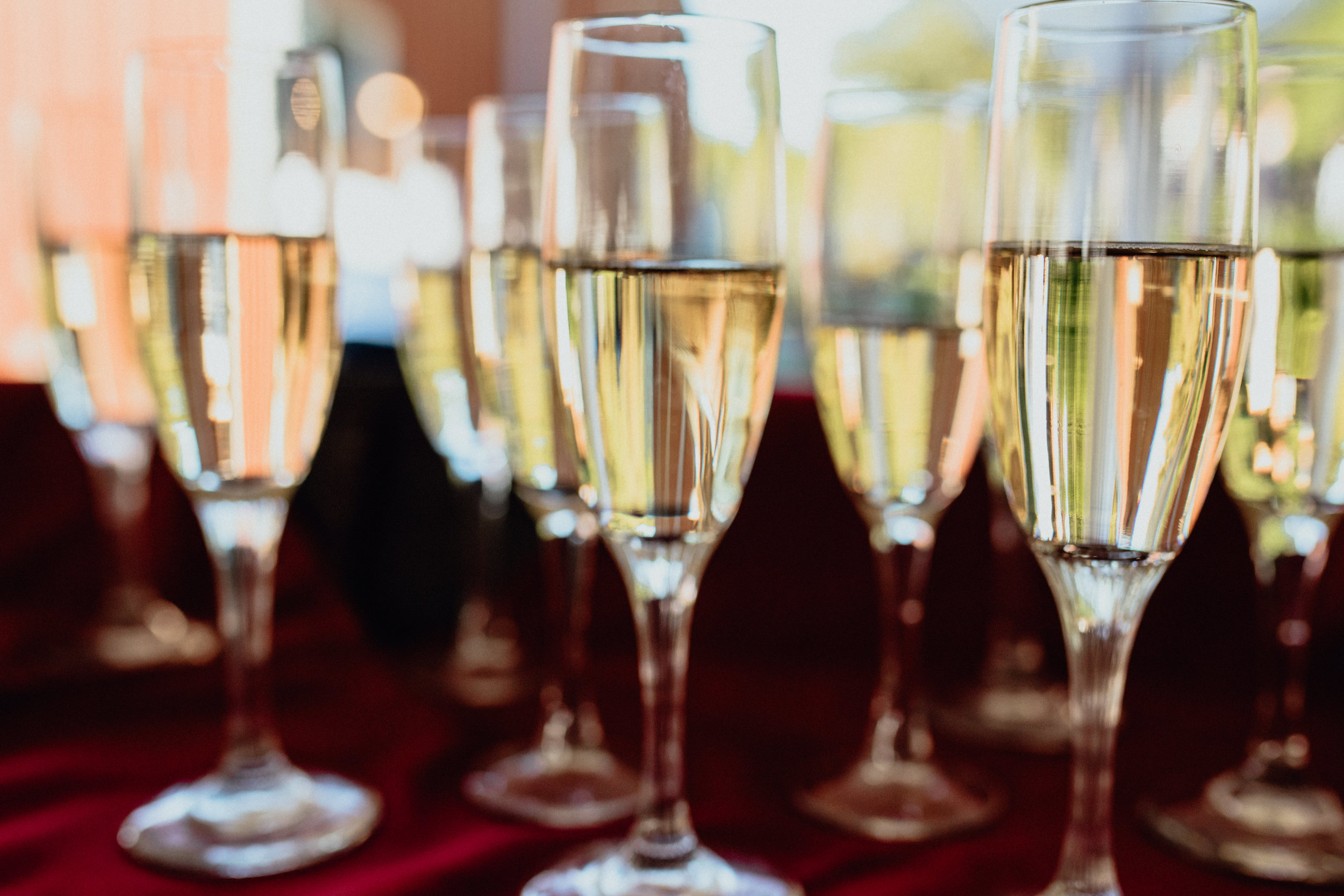 close up of filled champagne glasses on red tablecloth