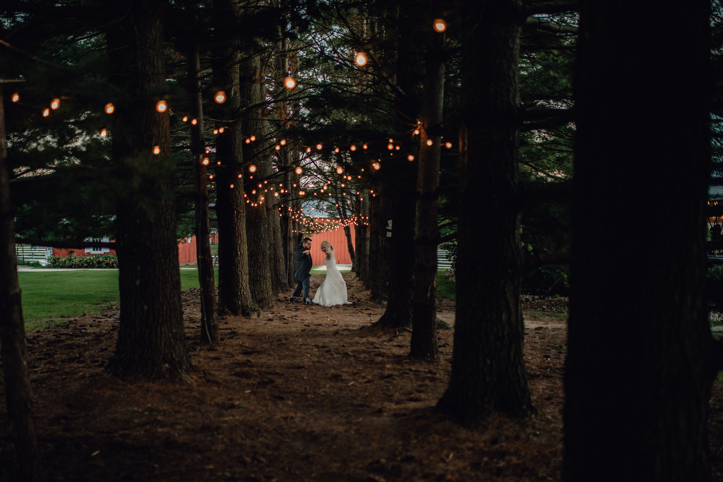 bride and groom under string lights in forest at oak hill weddings path of pines