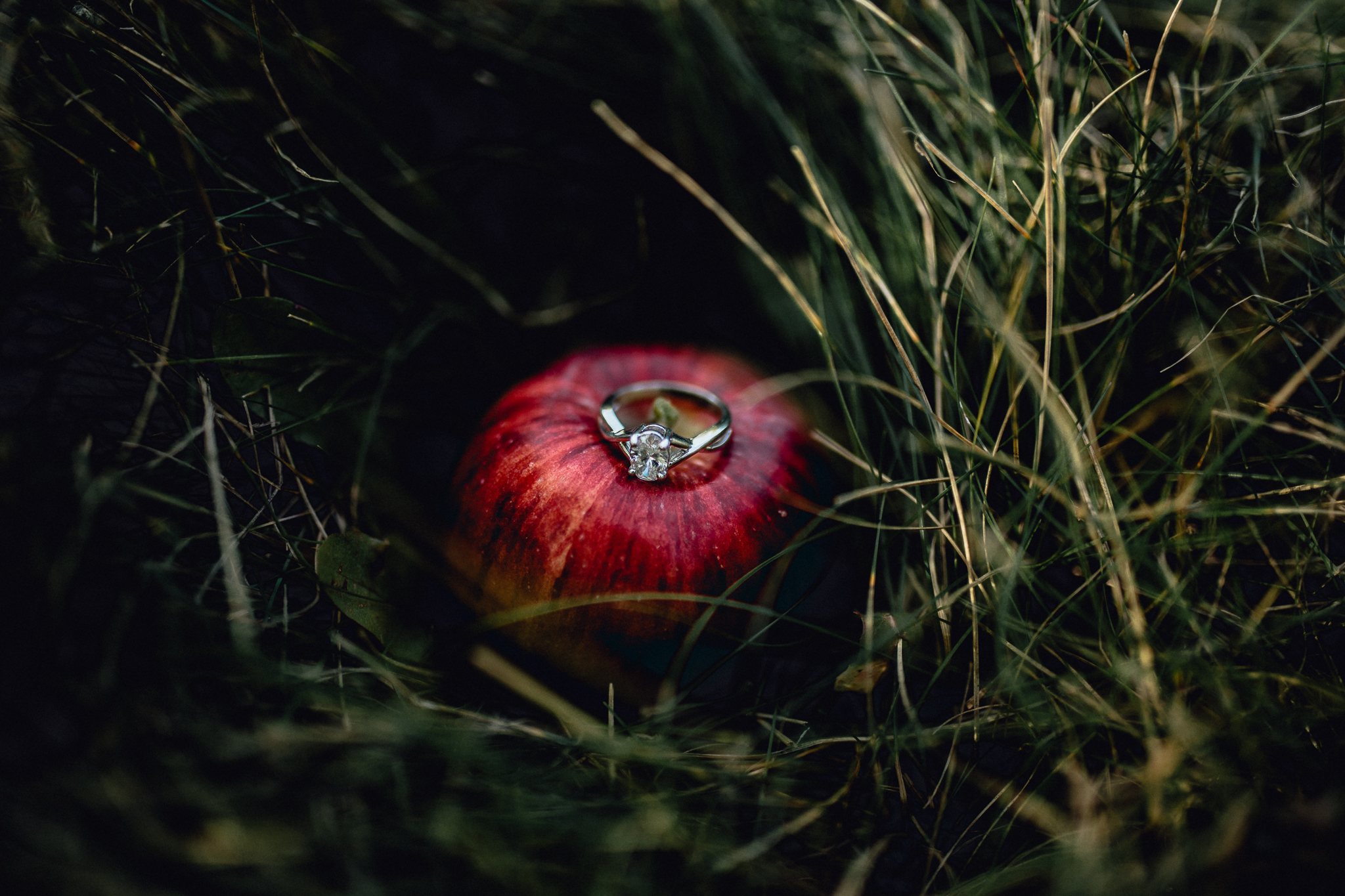 ENGAGEment-ring-on-top-of-red-apple.jpg