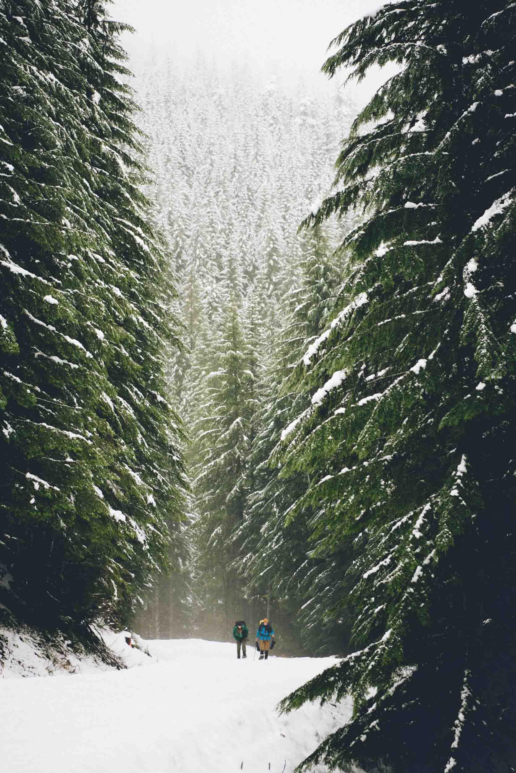 Miriam-Subbiah-Snow-Bowl-Hut-2.jpg