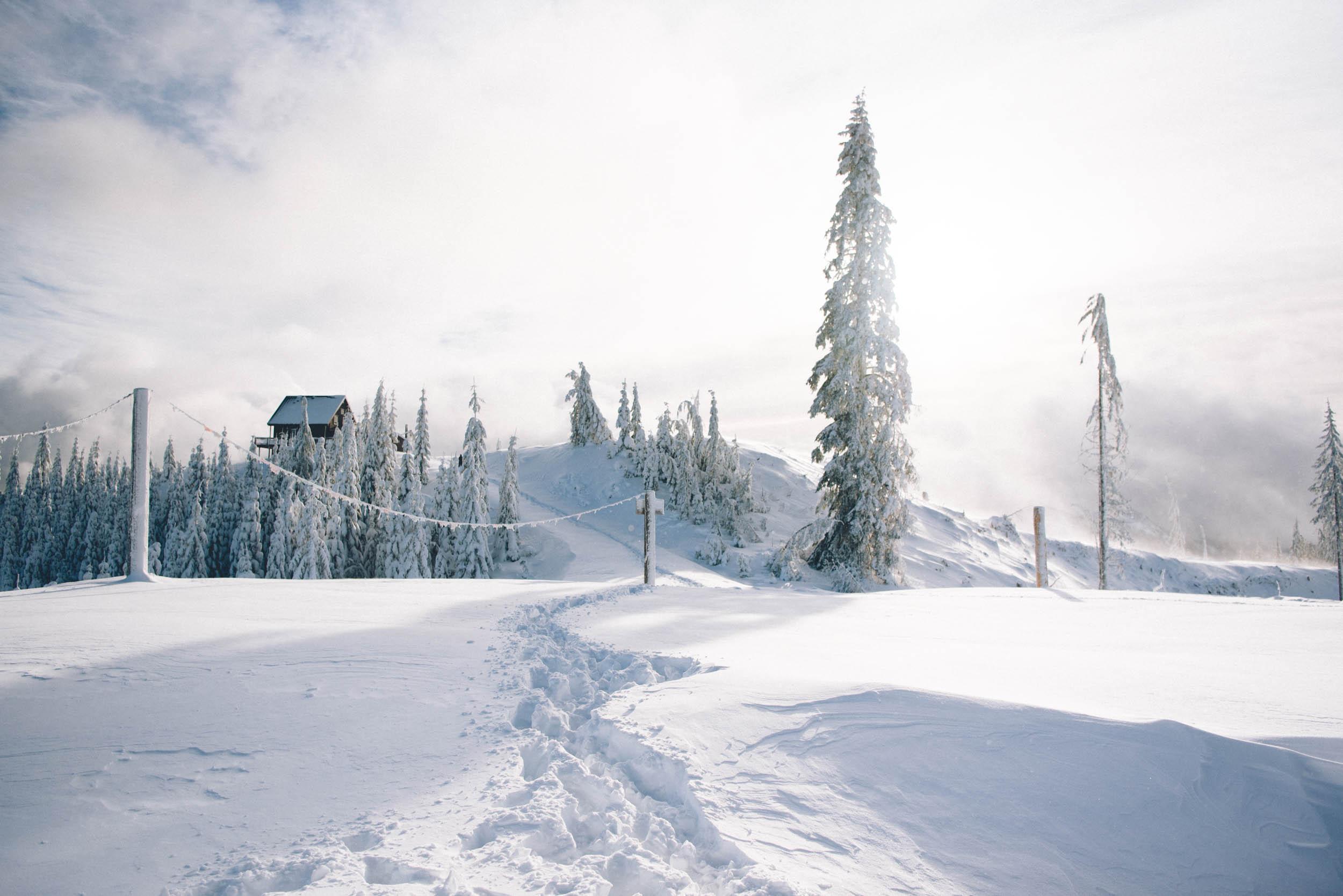 Miriam-Subbiah-Snow-Bowl-Hut-19.jpg