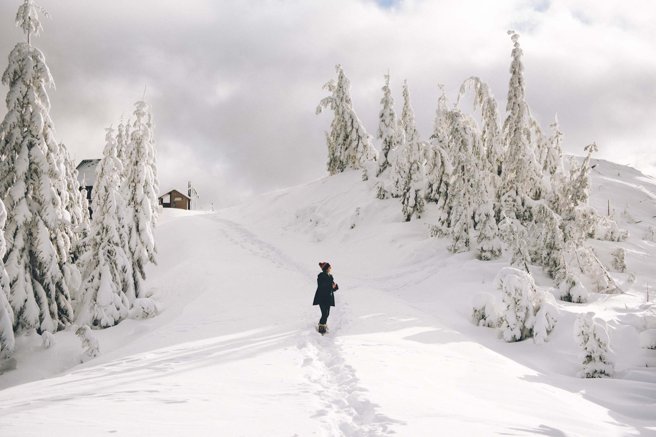 Miriam-Subbiah-Snow-Bowl-Hut-23.jpg