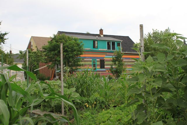 Urban Agriculture: Farm to Fork -