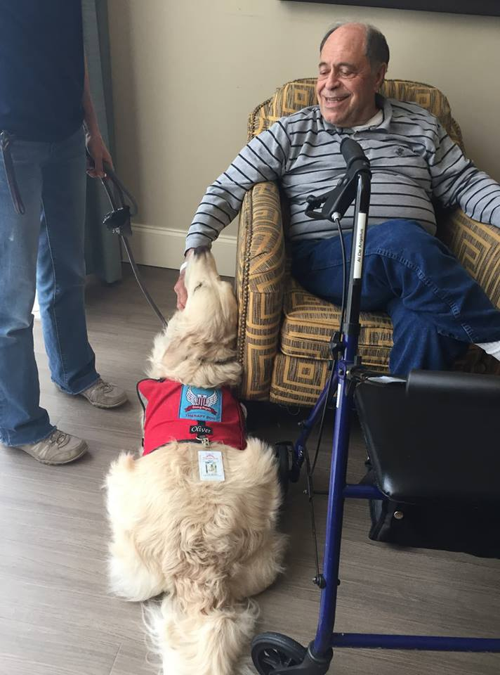 What we do - K-9 Caring Angels mission is to provide service, therapy, and comfort to the community through our well trained and rigorously tested Service, Therapy, and Comfort Canines.Learn More