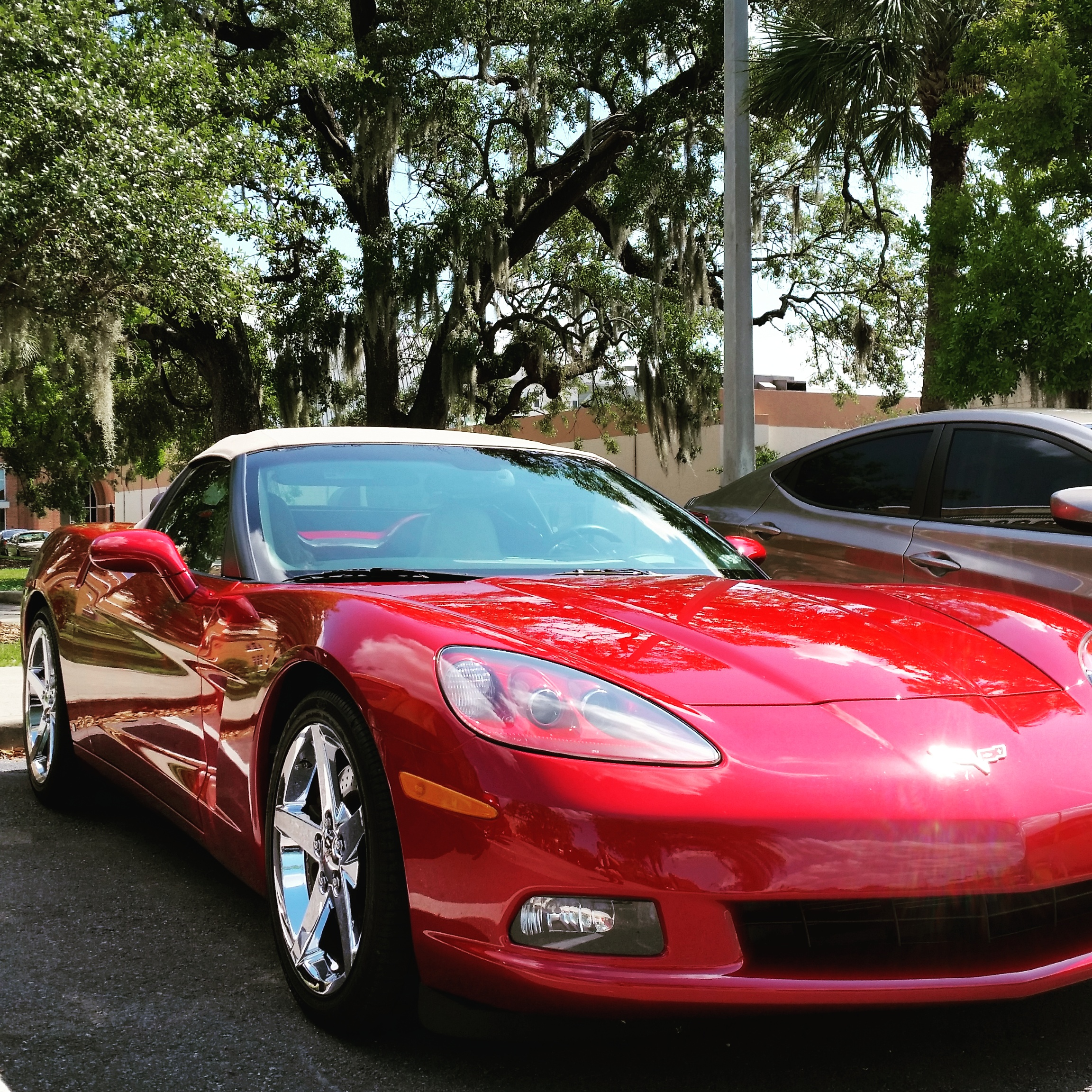 chevy-corvette-mobile-car-detailing-tampa