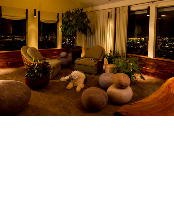 Opposite the tv wall, is a sitting room complete with mossy carpet and large felt stones to lounge on.