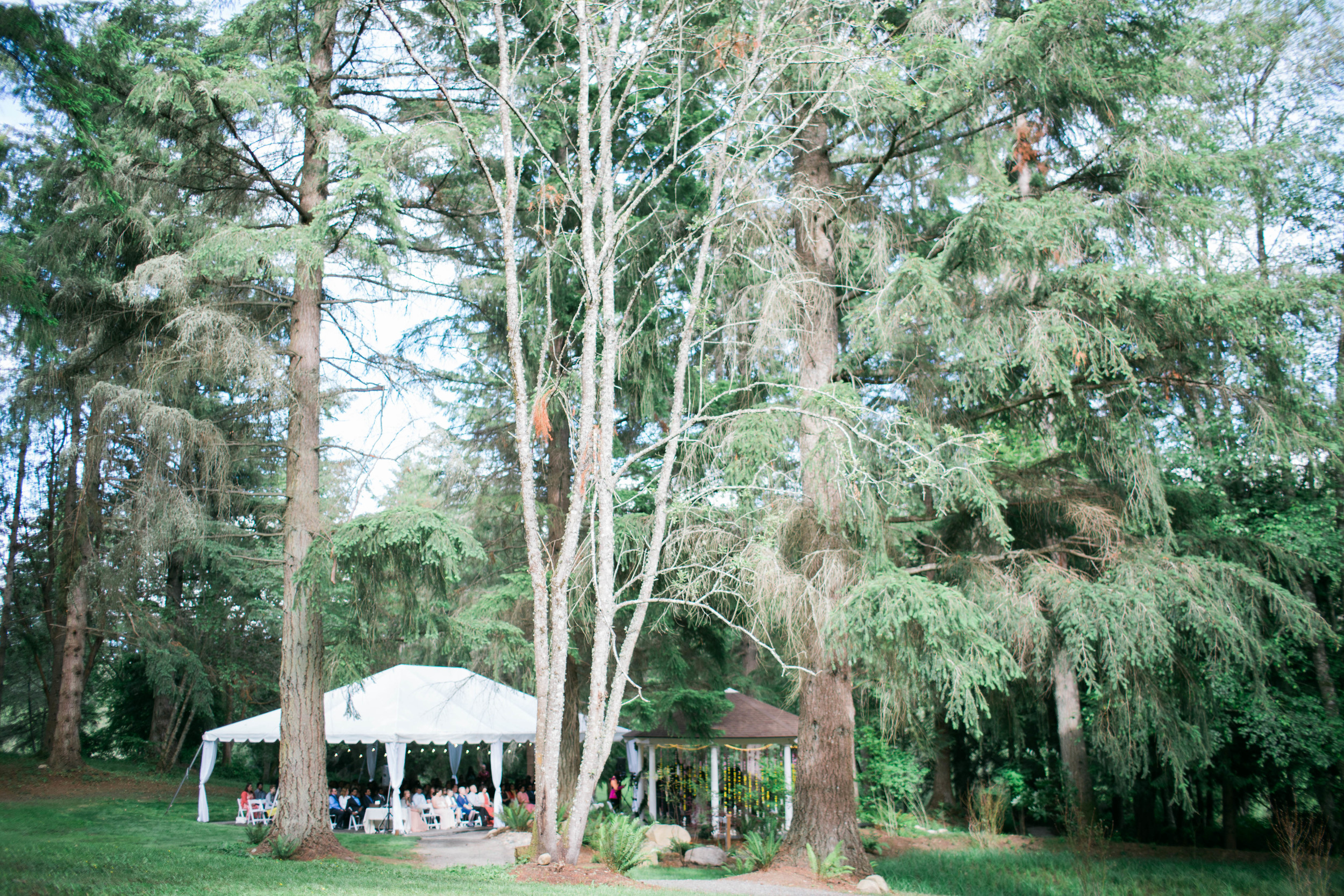 Hima+Dan_Wedding_Seattle+Couple_Kingston_6112016_1679.jpg