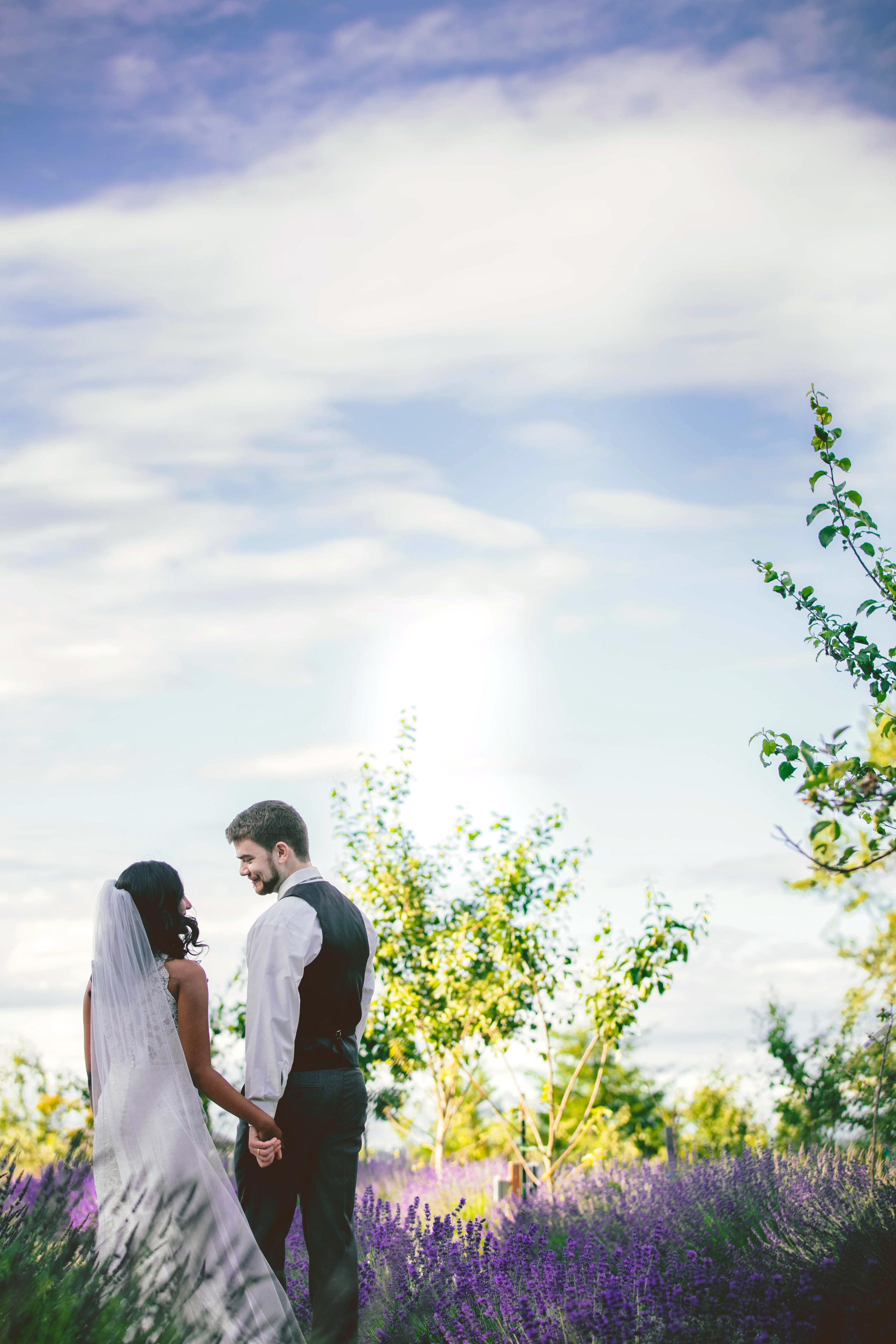 Hima+Dan_Wedding_Seattle+Couple_Kingston_6112016_5.jpg