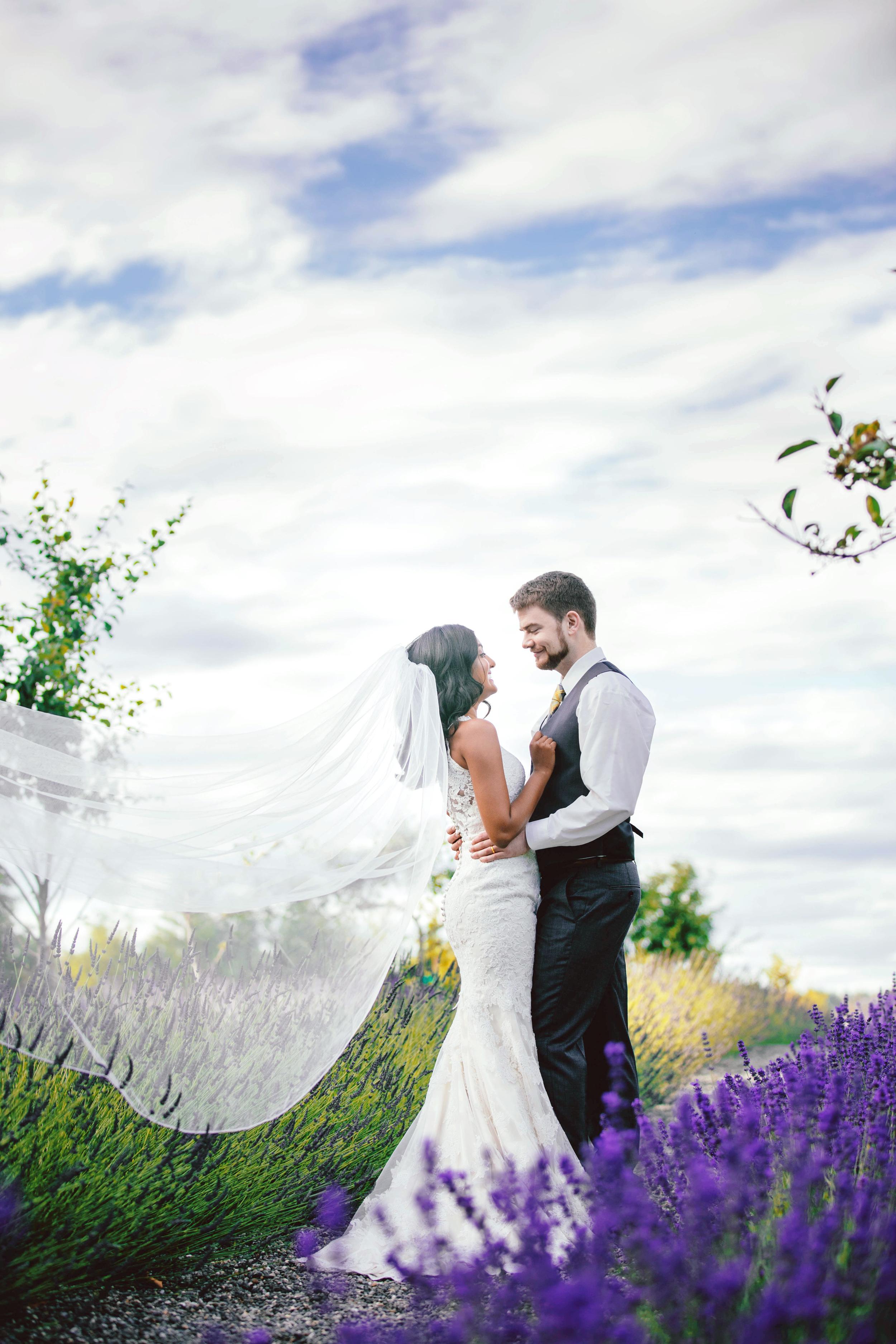 Hima+Dan_Wedding_Seattle+Couple_Kingston_6112016_6.jpg
