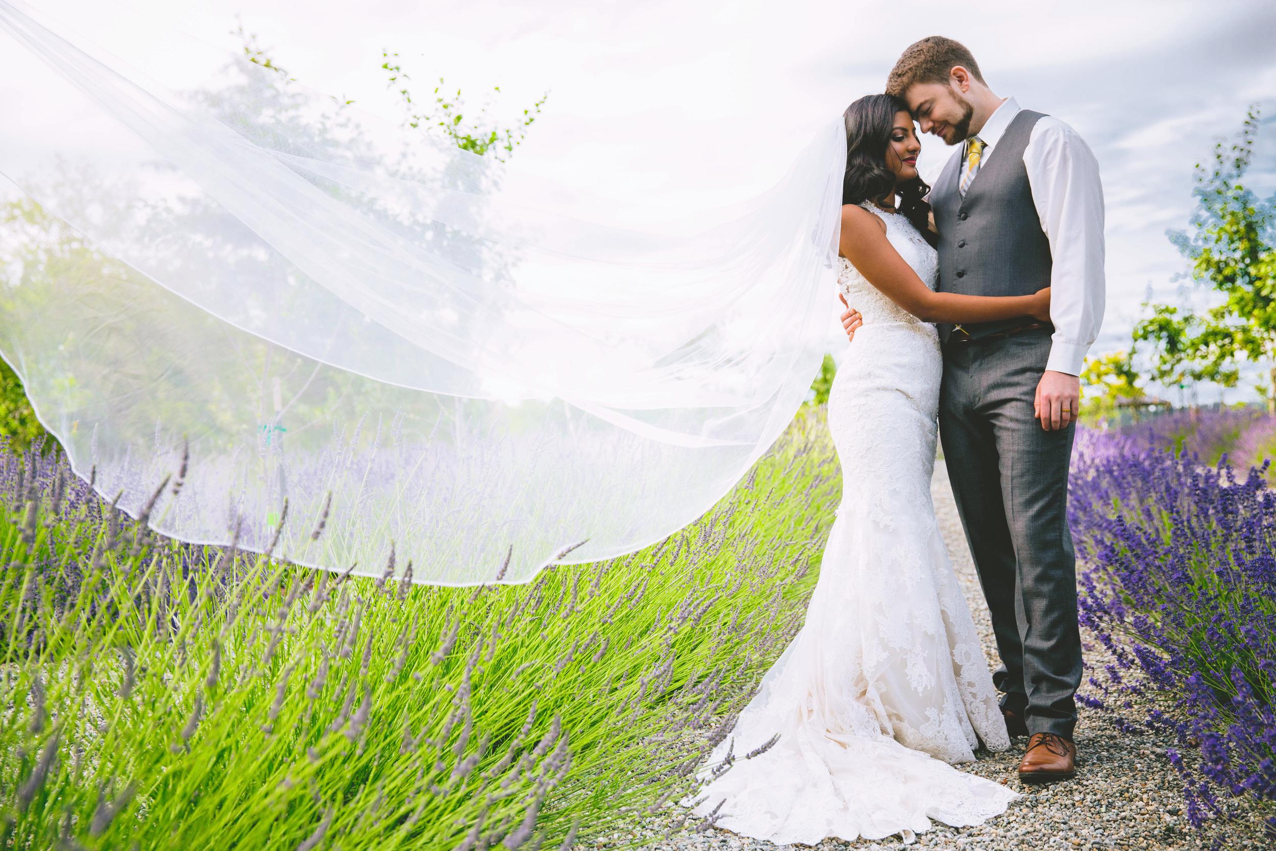 Hima+Dan_Wedding_Seattle+Couple_Kingston_6112016_70.jpg