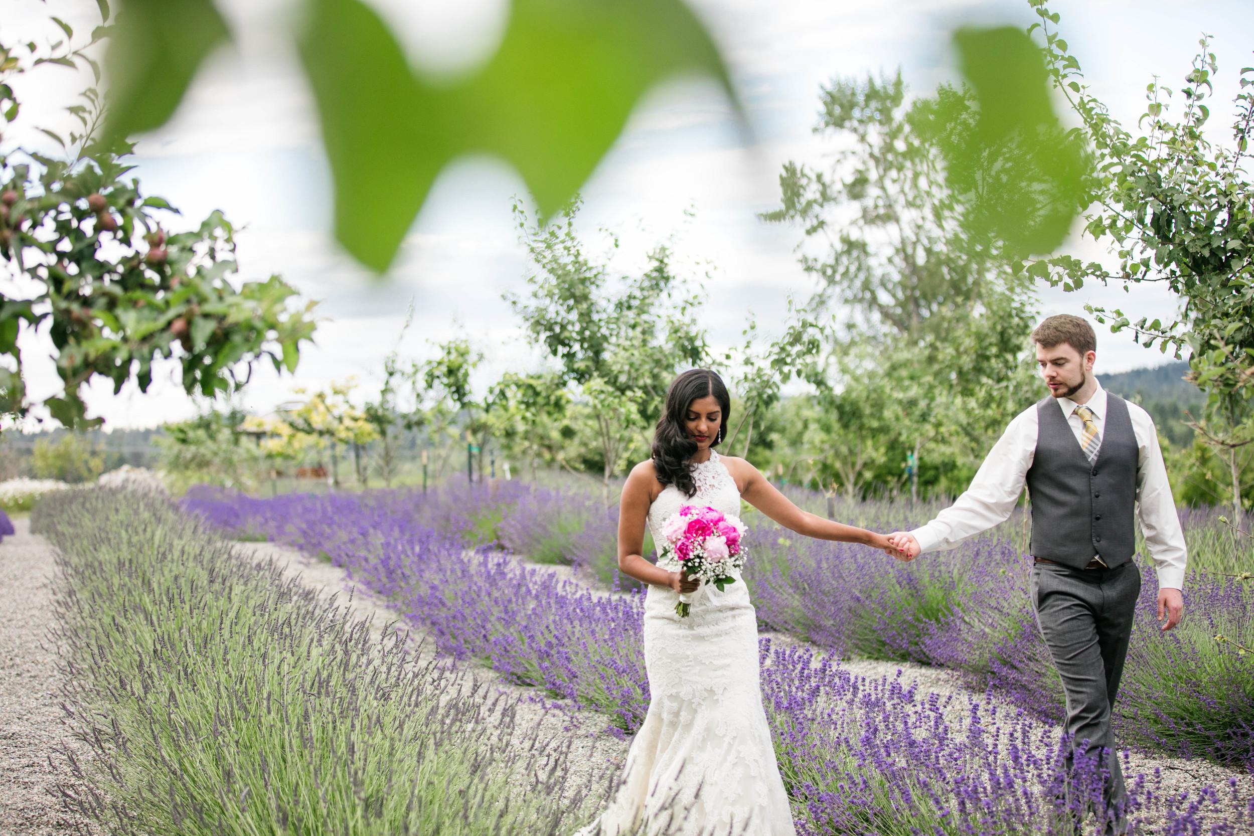 Hima+Dan_Wedding_Seattle+Couple_Kingston_6112016_158.jpg
