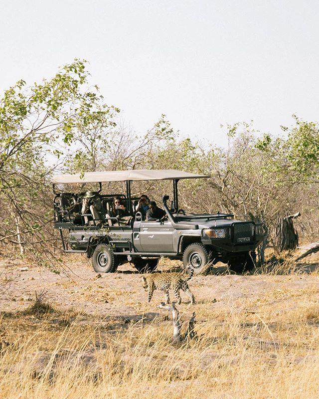 #botswana #botswanasafari #okavangodelta #okavango