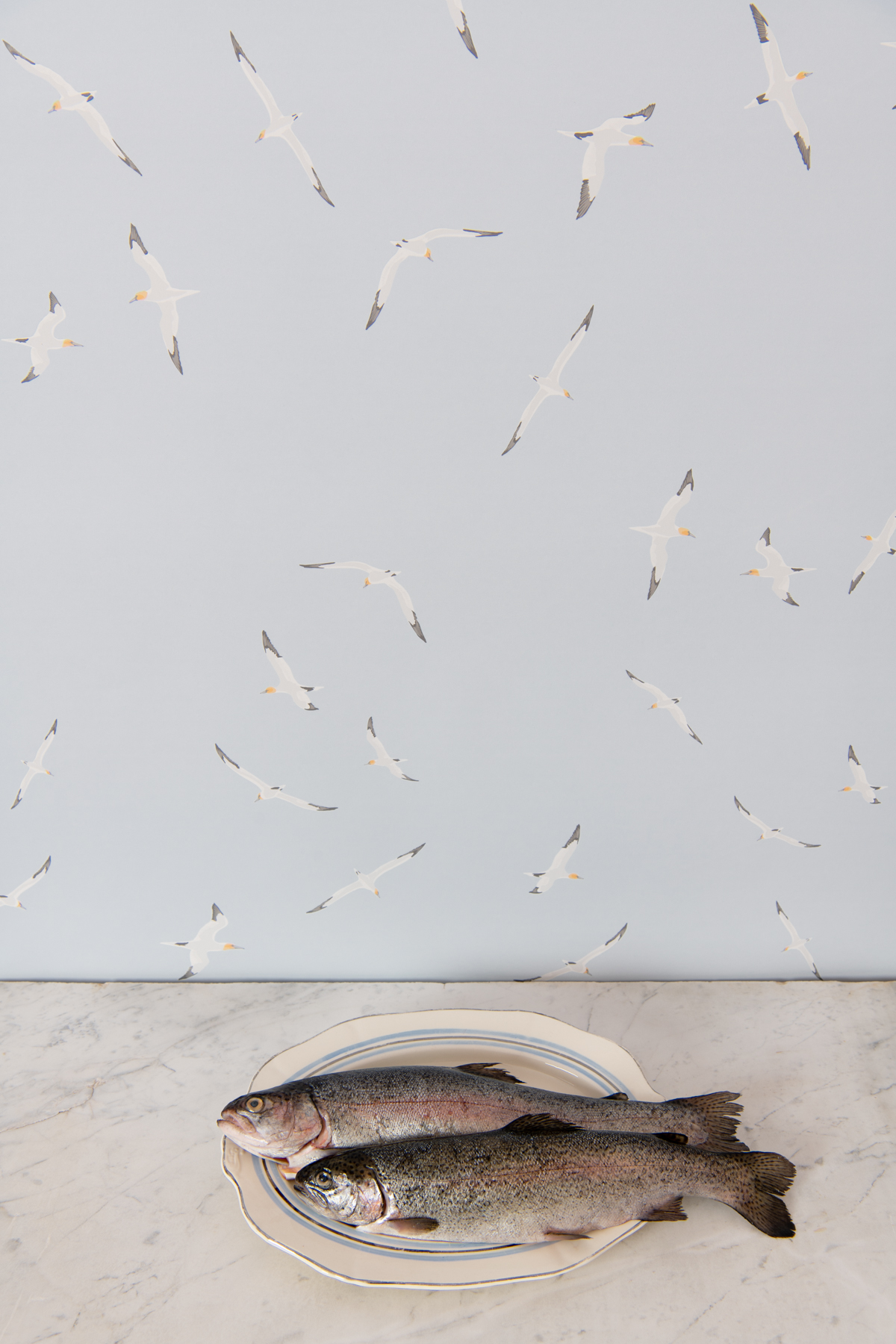 Kate Golding Gannets wallpaper // Modern wallcoverings and interior decor.
