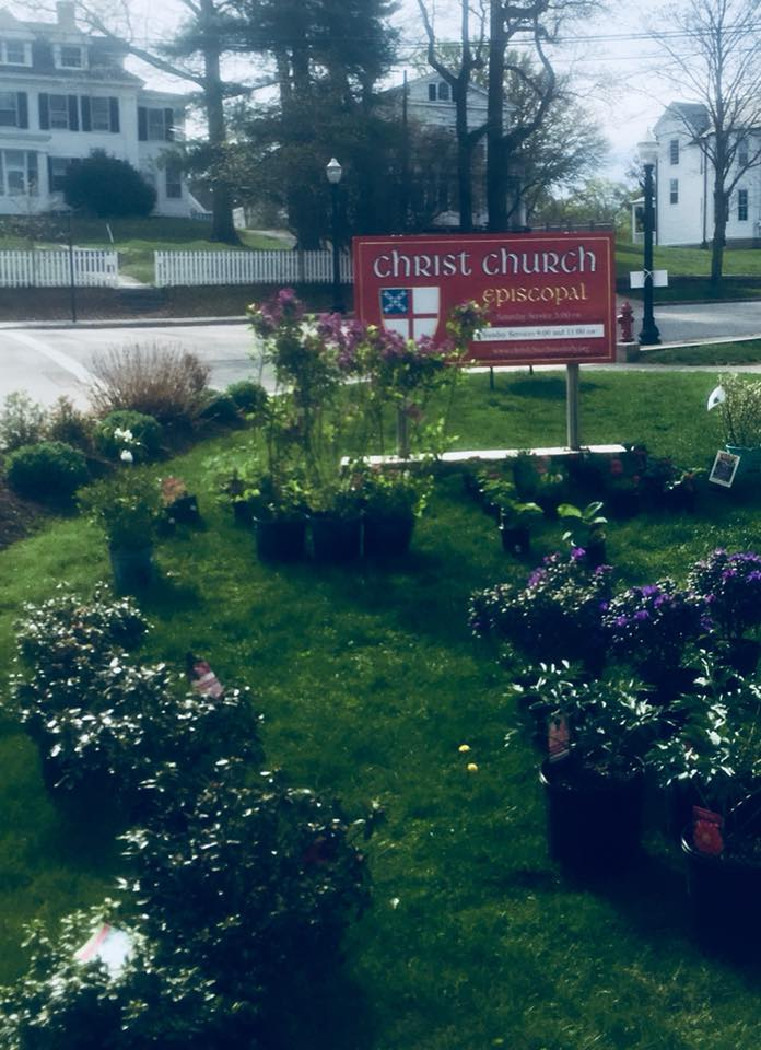 The Westerly Sun visited during the church's annual shrub sale!