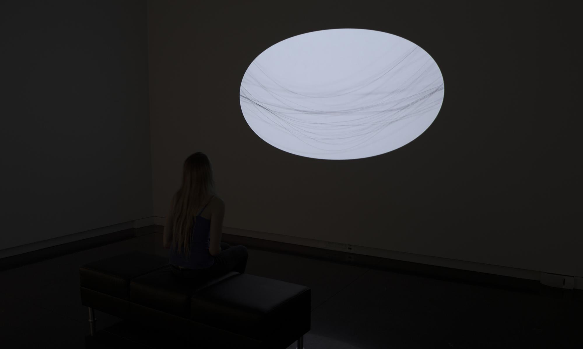 Seen/Unseen (installation view), 2014