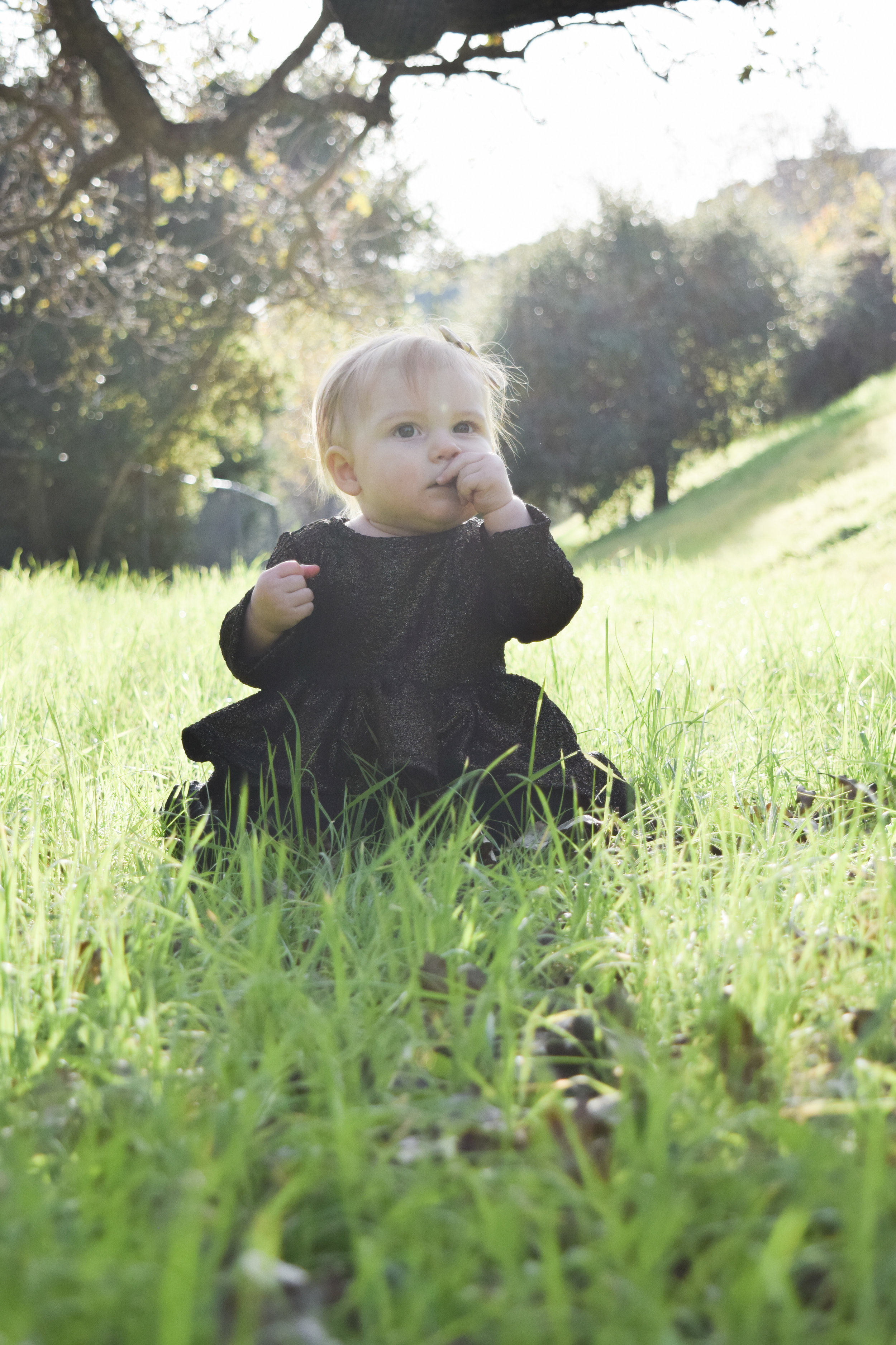 BABY FASHION - black and gold baby peplum, gold baby bow, velvet baby bloomers, black formal pediped baby shoes