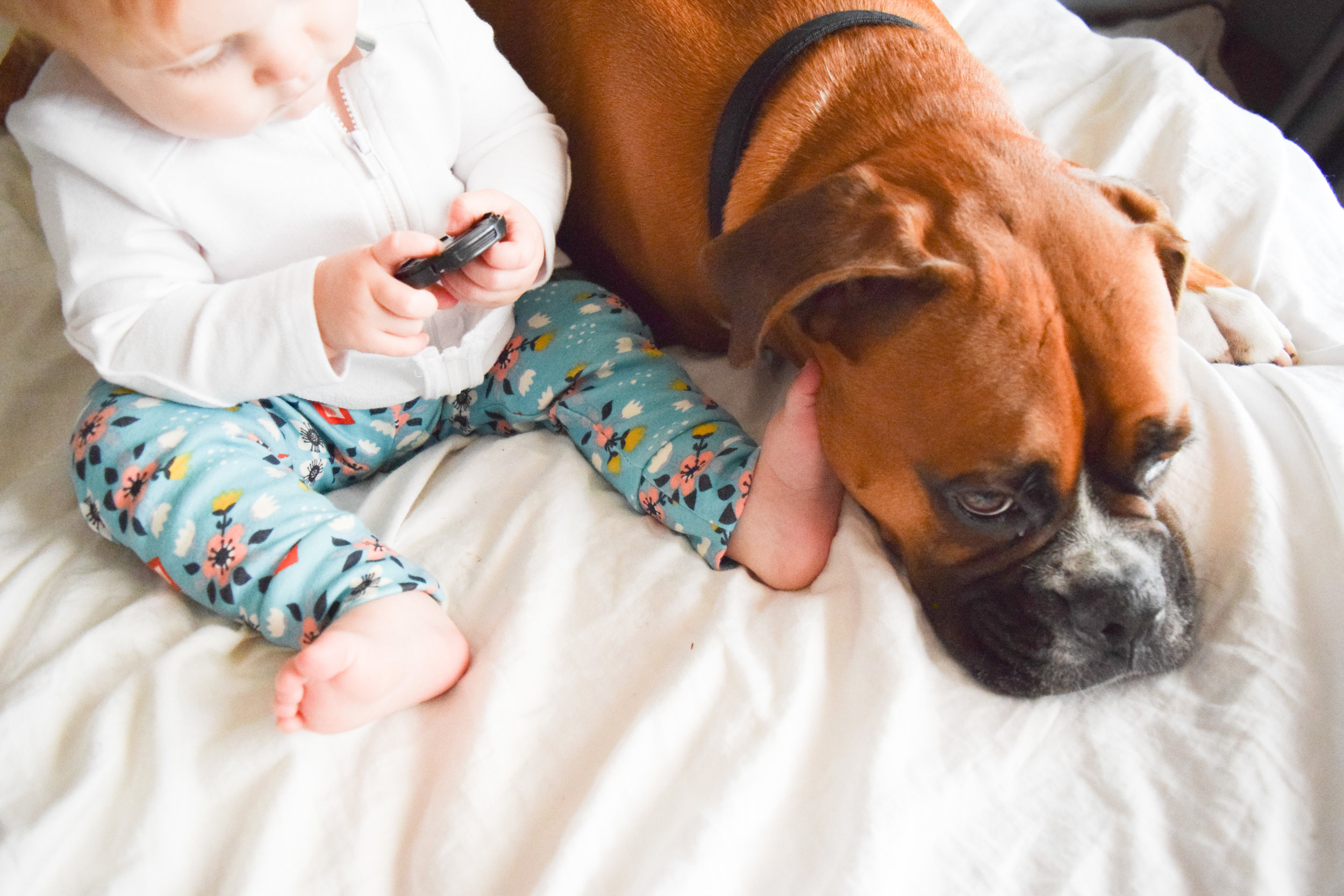 Teal Baby Floral Leggings - Baby + Boxer Puppy Photos