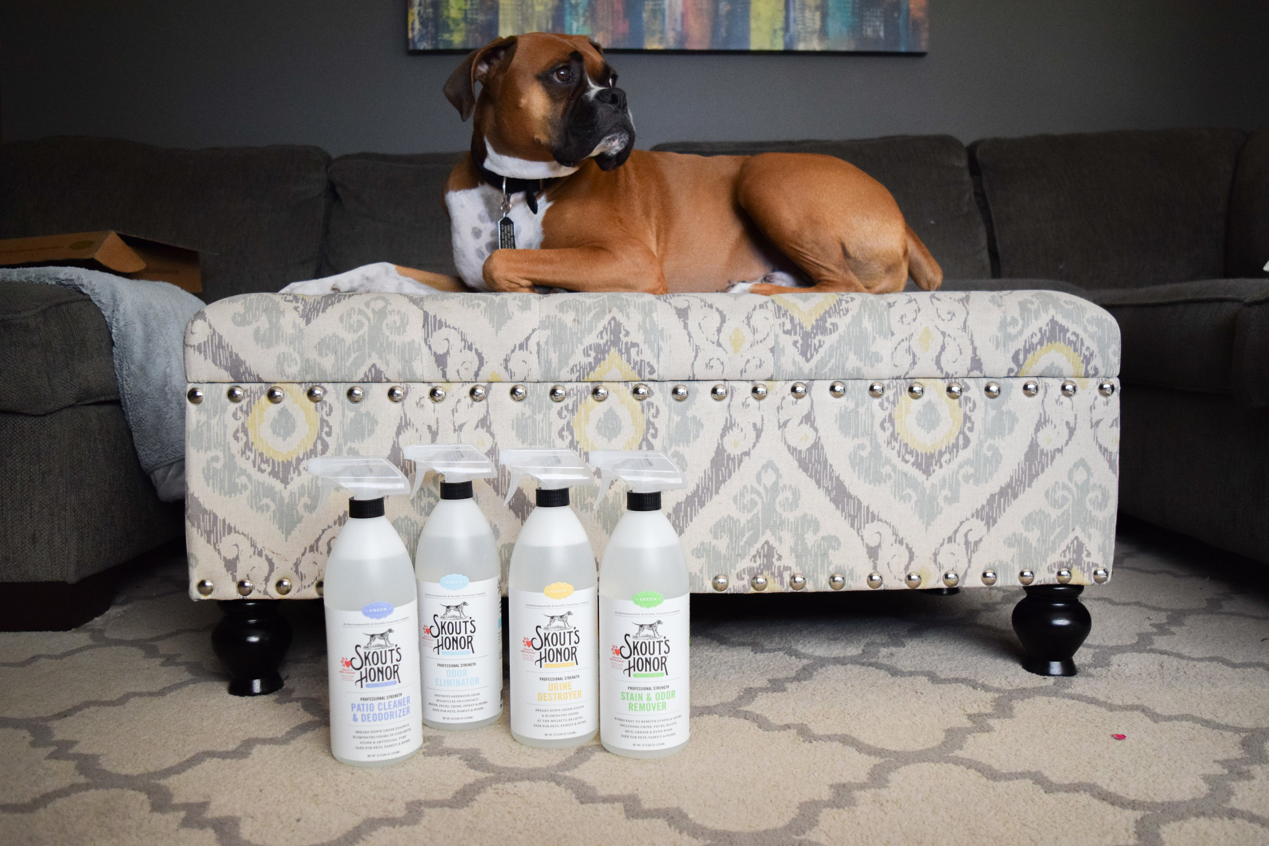 Skout's Honor - All Natural Pet Stain + Pet Odor Removal