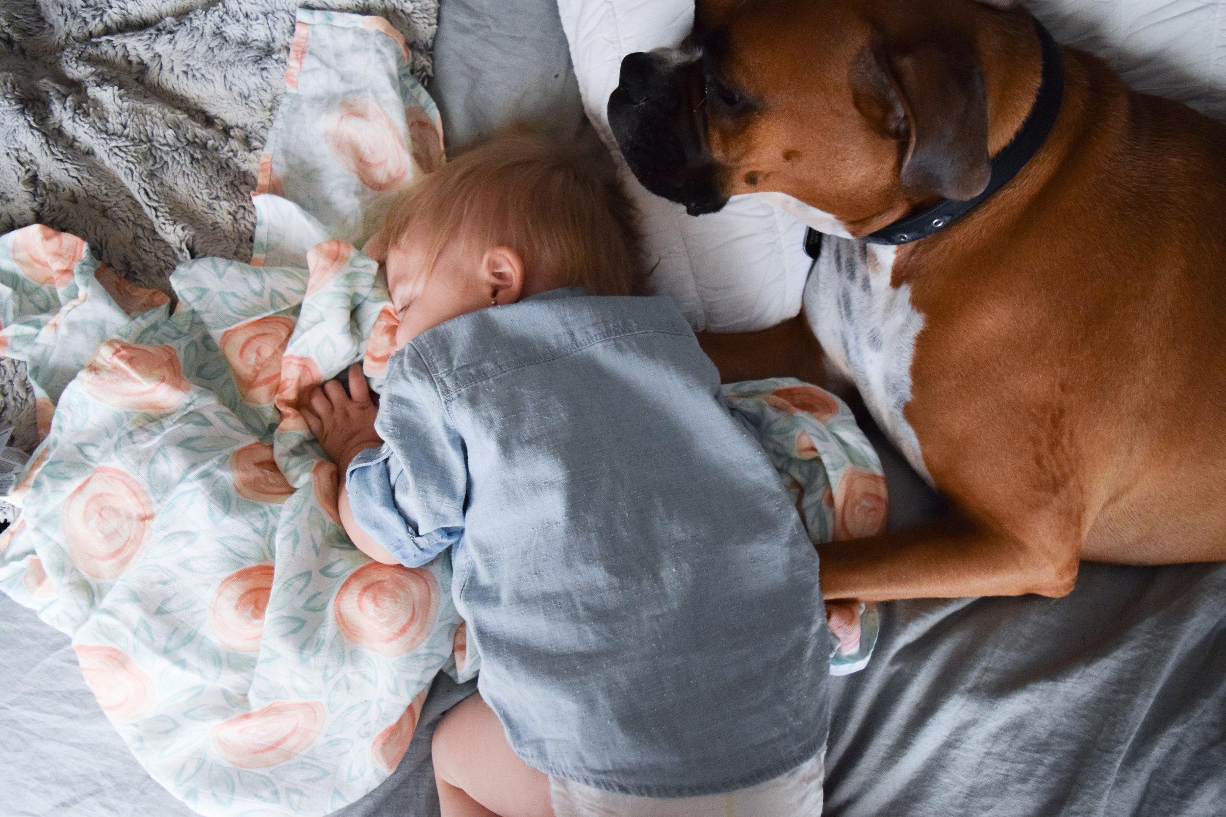 Soft Breathable Spring Crib Sheets + Swaddle Blankets -- Bebe Au Lait
