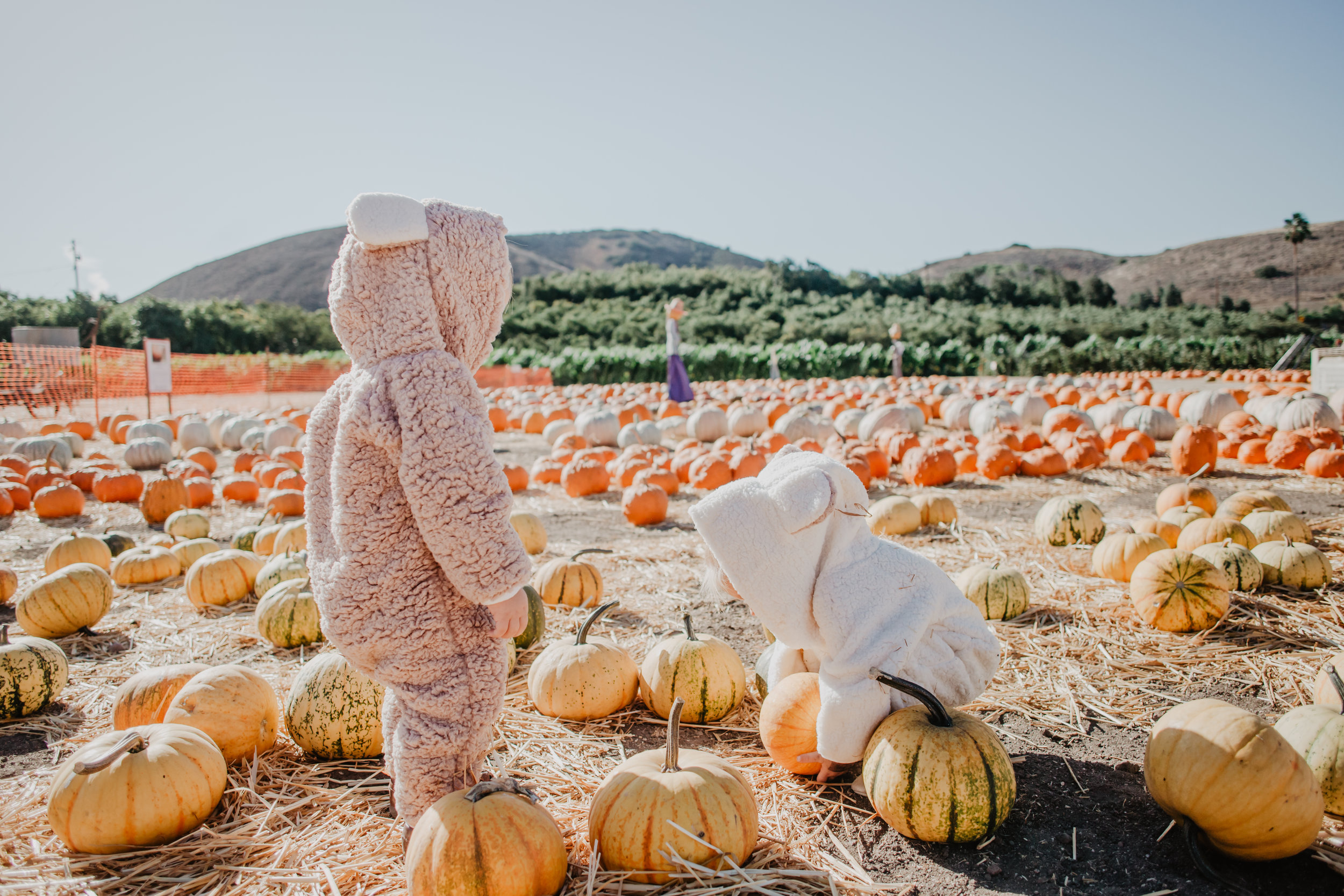 Kids-Baby Halloween Costume Ideas - Baby Bear Costume - Mommy Blogger/Vlogger -- The Overwhelmed Mommy