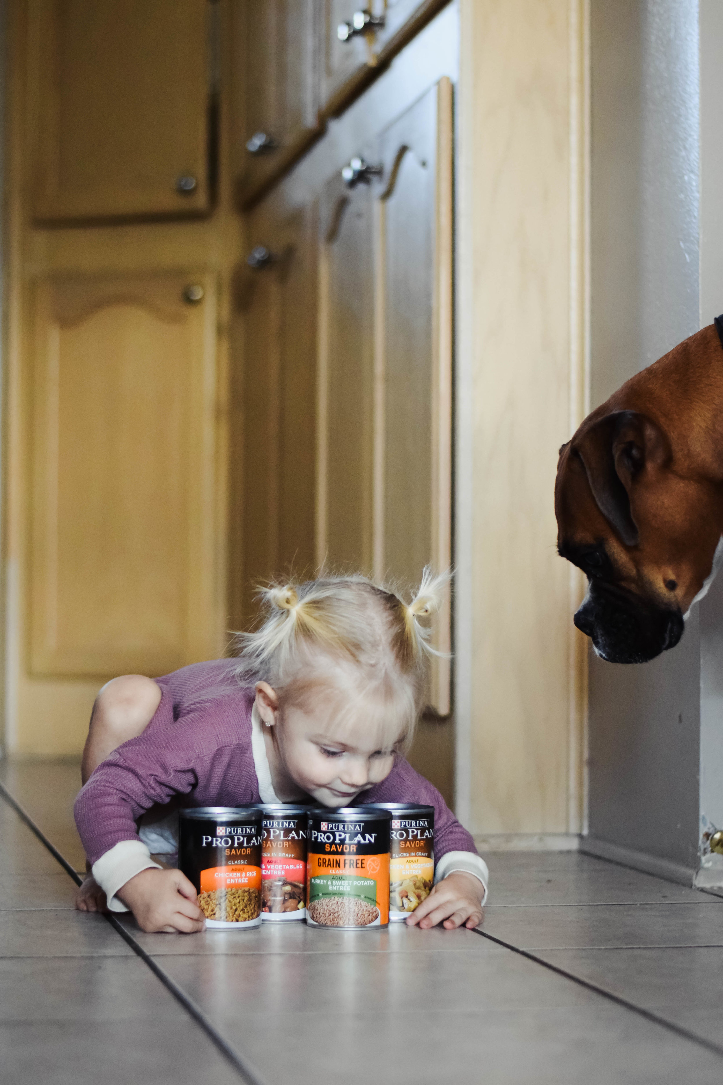 I've been doing dog food all wrong  — The Overwhelmed Mommy