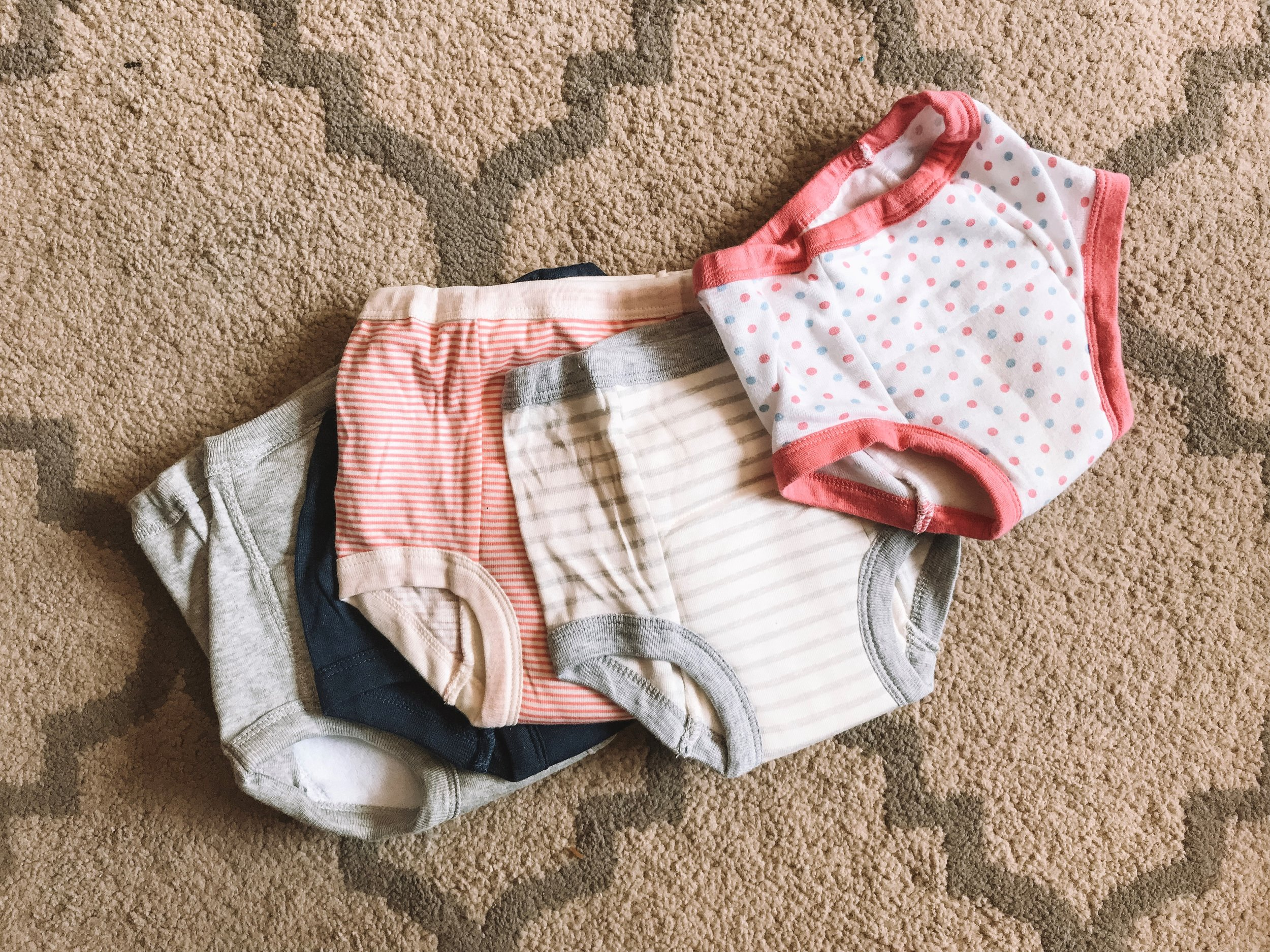 Potty Training Tips for 2 Year Olds - The Overwhelmed Mommy Blogger