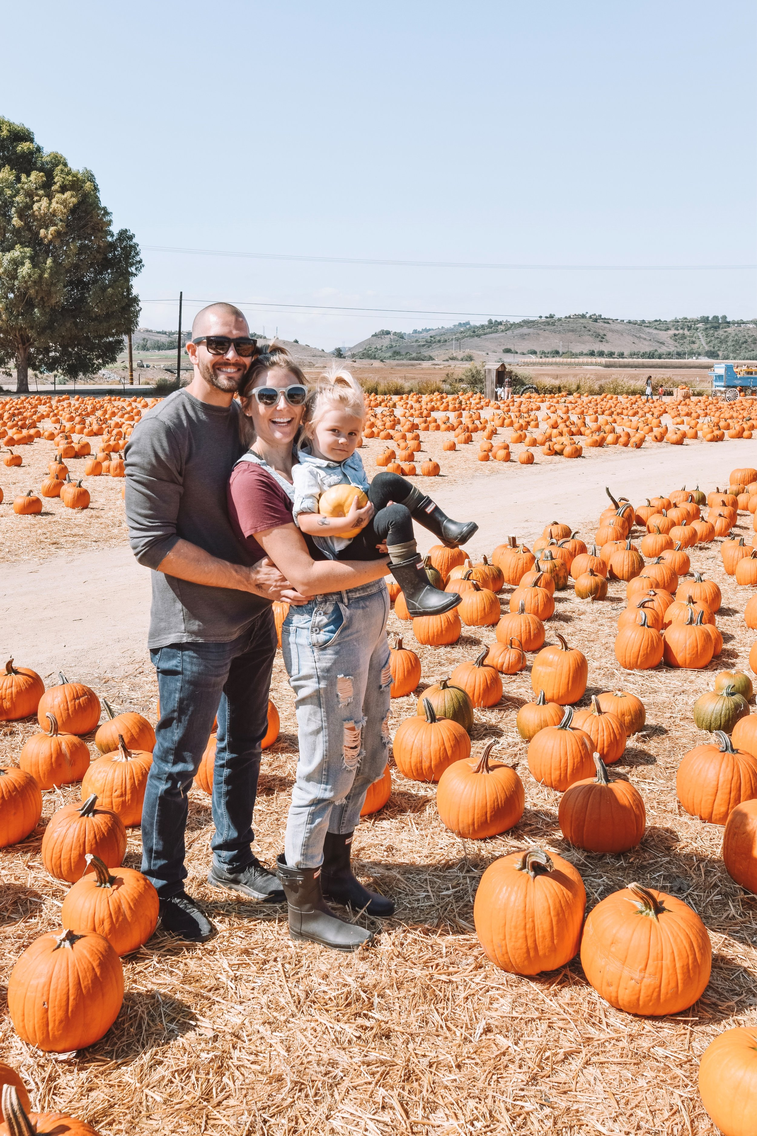 Underwood Family Farms - Southern California Pumpkin Patch 2018 - The Overwhelmed Mommy Blogger
