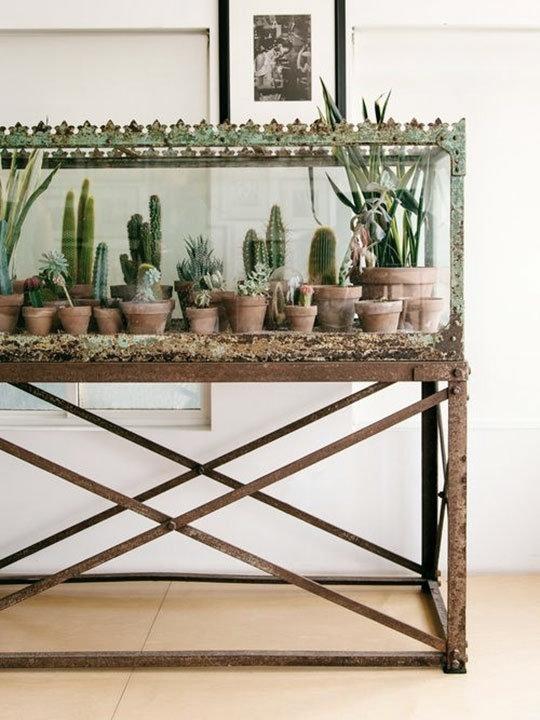 indoor-garden-8.jpg