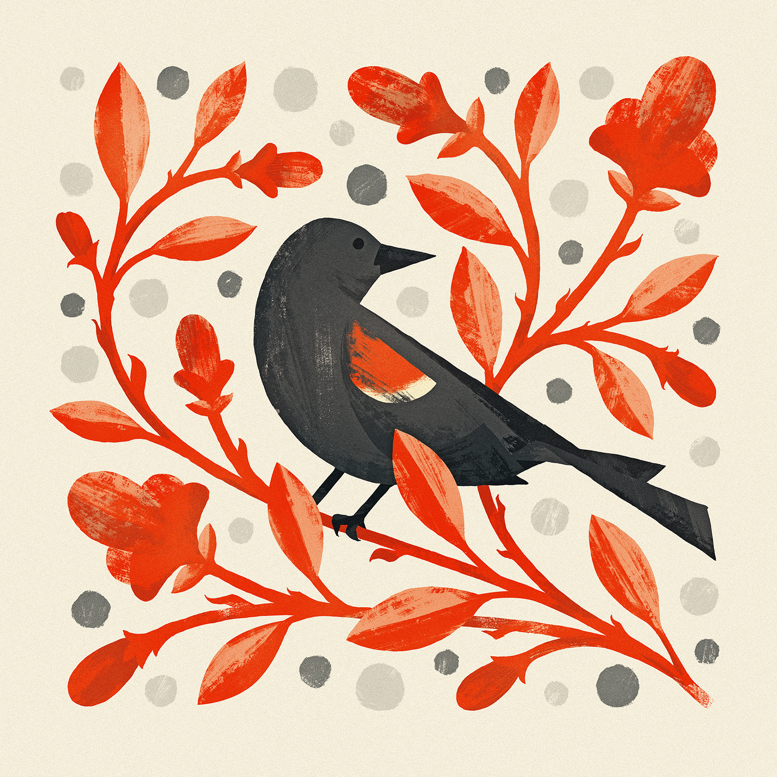 Red-Winged Blackbird Illustration