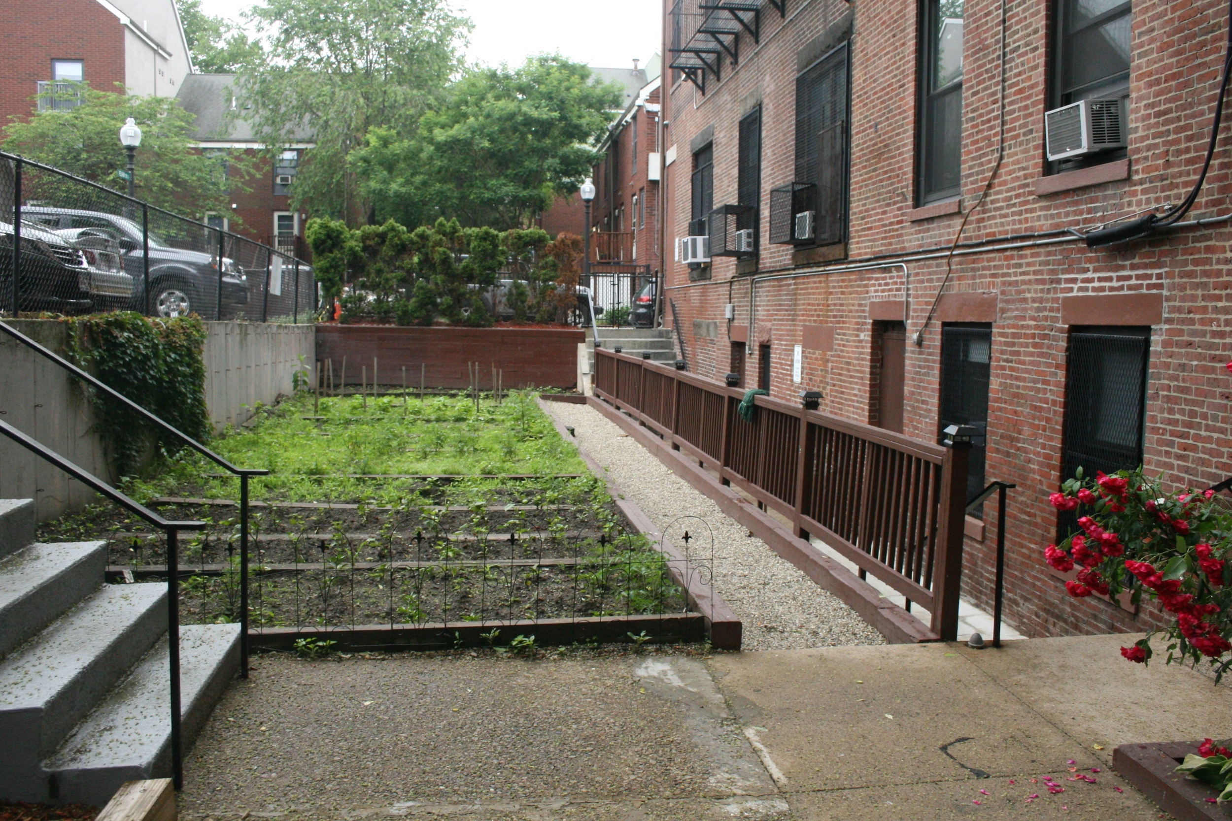 BEFORE - existing yards