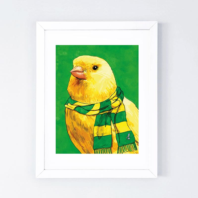 Proud Canary 1_800.jpg