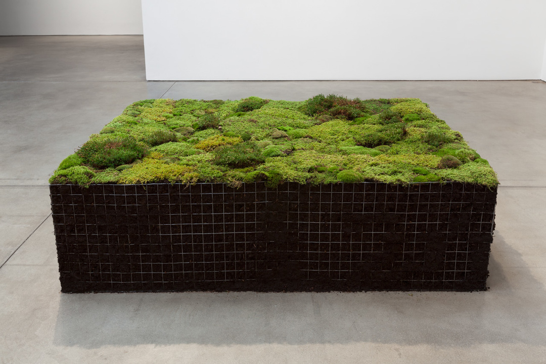 Meg Webster,  Volume for Lying Flat , 2016, peat moss, green moss, soil, 25 x 59 x 81 1/2 in. (55.9 x 149.9 x 207 cm)