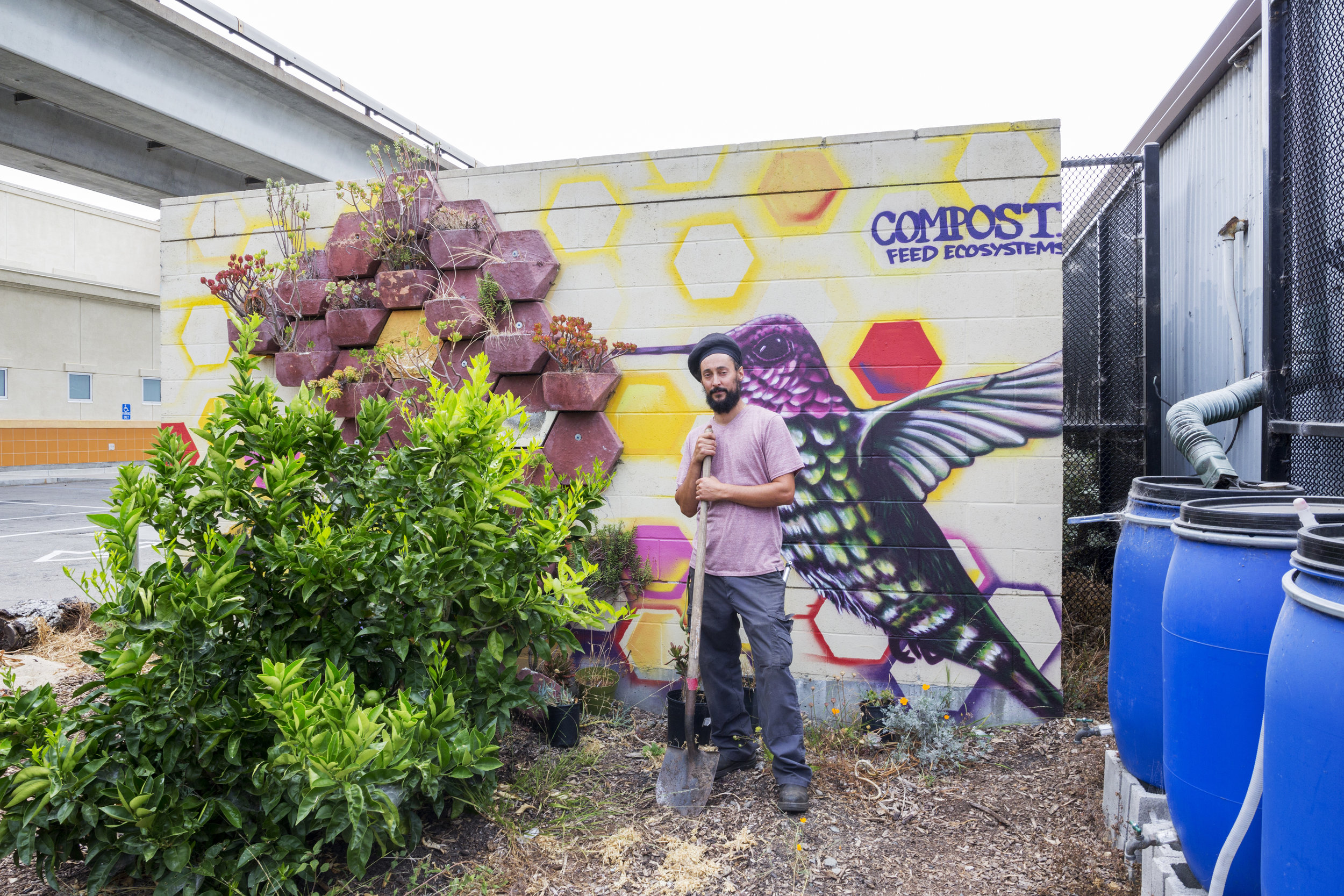 From ongoing exhibition:   Take Root: Oakland Grows Food ,  Matthew Linzner, program manager for  Love Cultivating Schoolyards , at work in the garden. Courtesy of Oakland Museum of California.