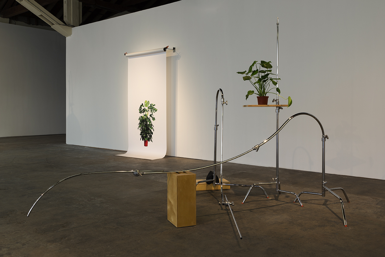 Kerry Tribe Installation view of  The Loste Note  at 365 Mission April 10 – May 31, 2015 Photography by Fredrik Nilsen Studio Courtesy of the Artist and 365 Mission