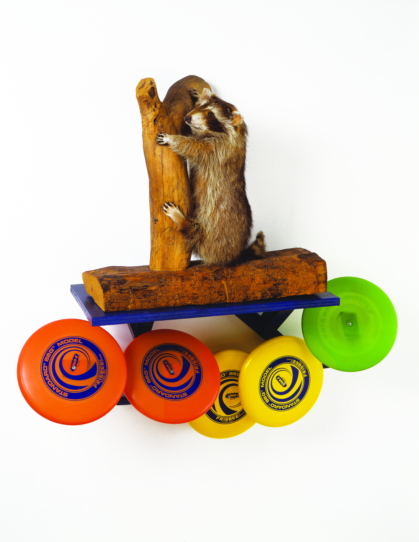 Shelf with Racoon , 1983, Painted wood shelf, plastic frisbees, stuffed raccoon mounted on wood, 33 x 34 x 11 ¼ in. (83.8 x 86.4 x 28.6 cm), Photo: David Lubarsky. Courtesy the artist and Tanya Bonakdar Gallery, New York / Los Angeles