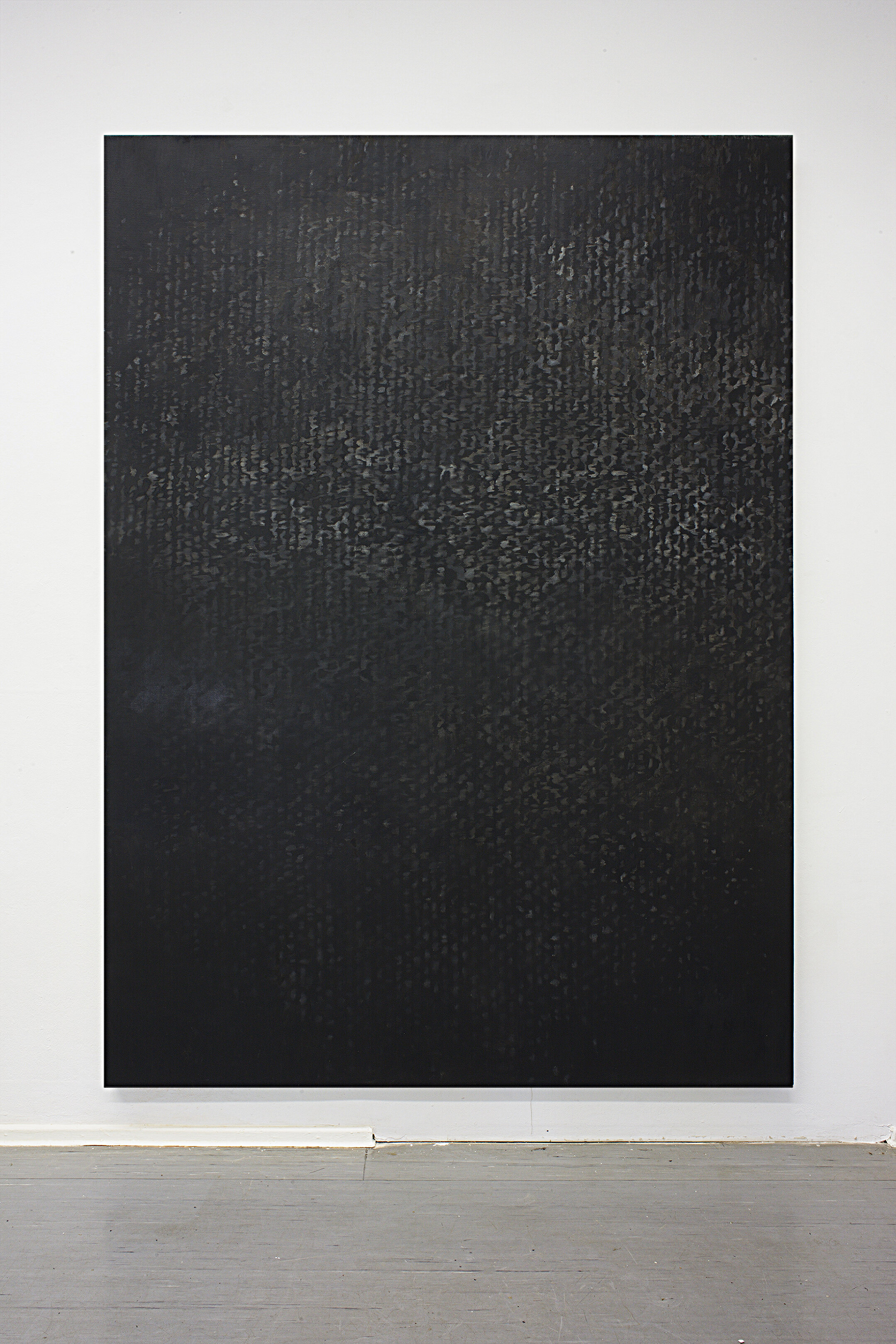 Canvas 01 , oil & pigment on canvas, 128 x 92.5 inches, 2010