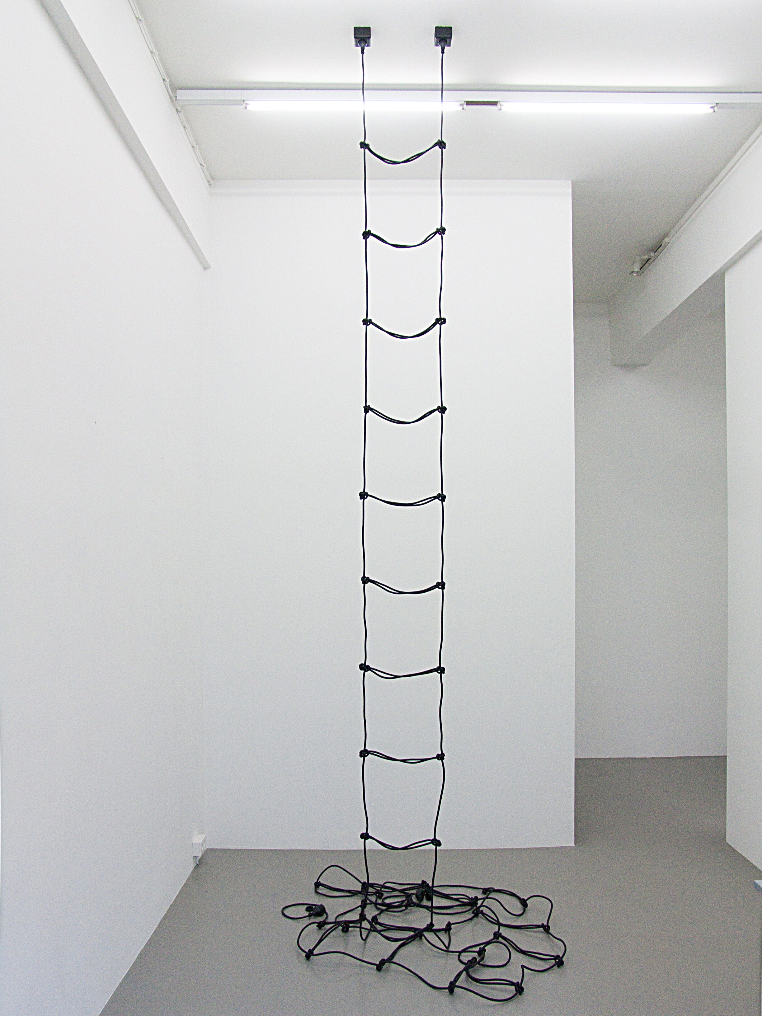 Leiter , installation view, two 82-foot cables + 2 Plugs, Charim Ungar Contemporary Gallery, Berlin 2010