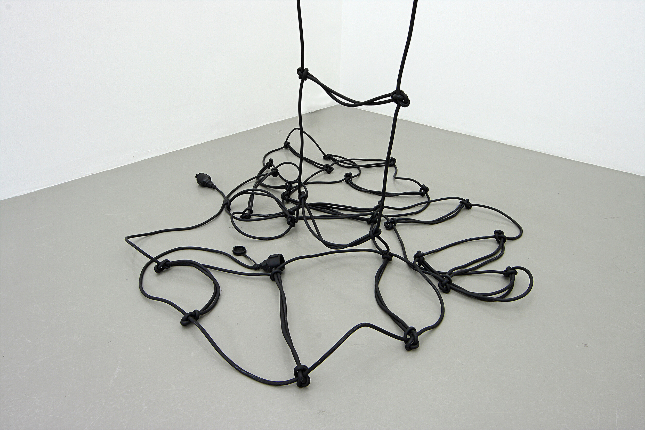 Leiter , detail, two 82-foot cables + 2 plugs, Charim Ungar Contemporary Gallery, Berlin 2010