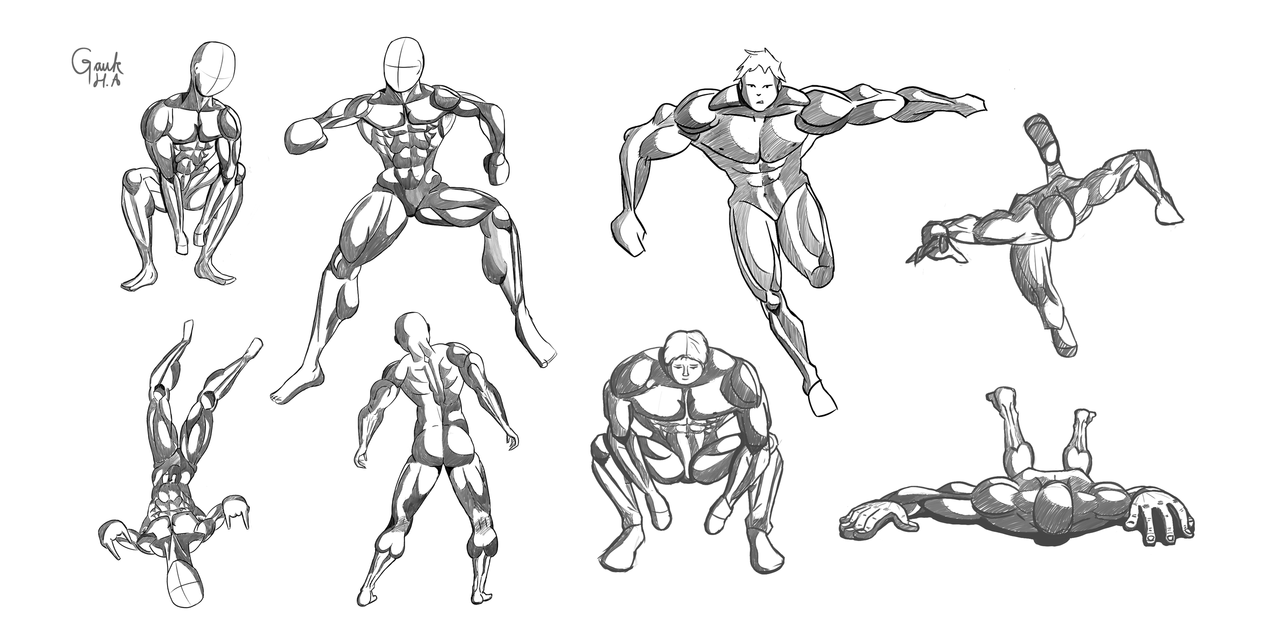 Anatomy with poses