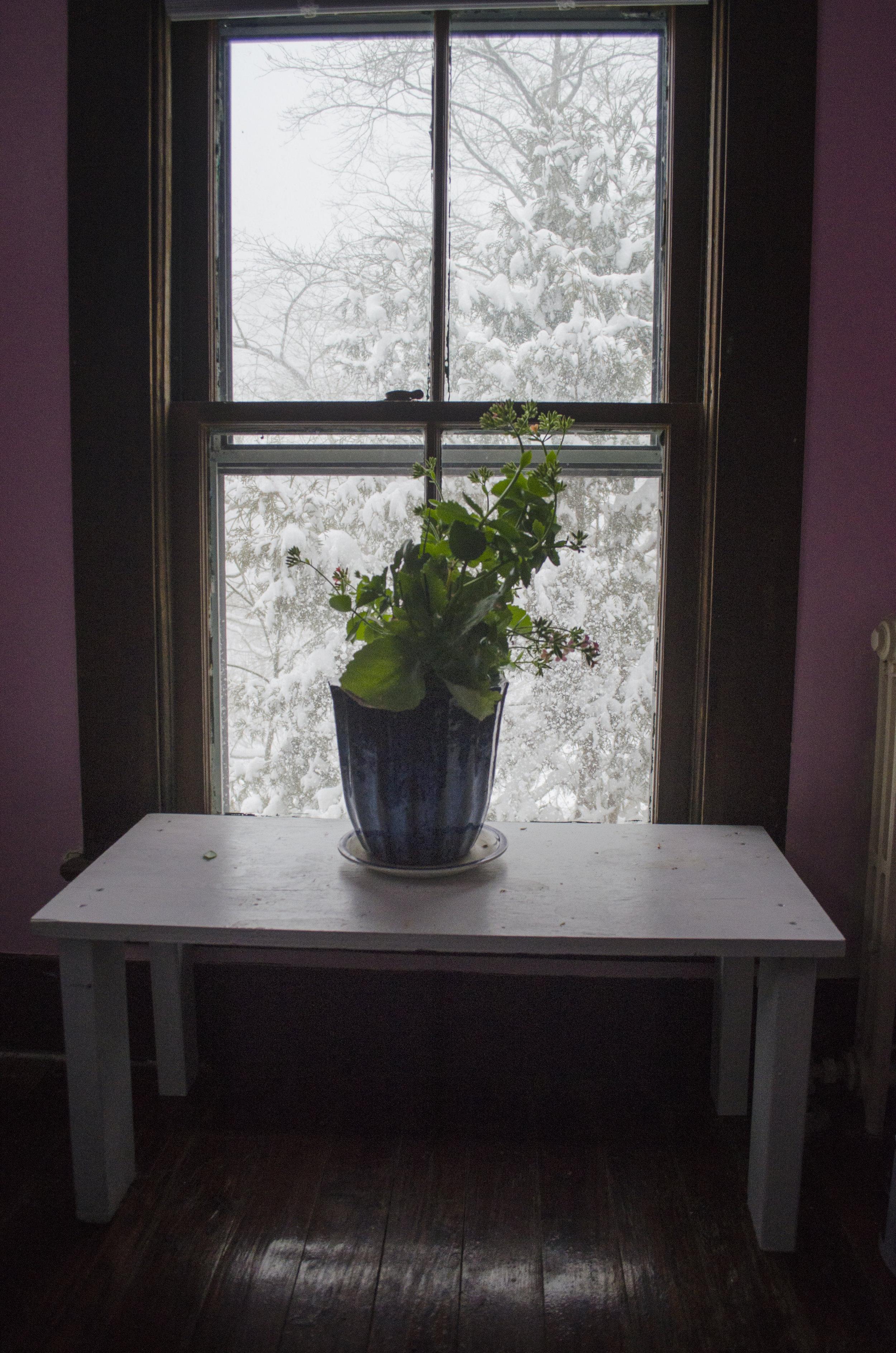 one-winter-day_32703089031_o.jpg