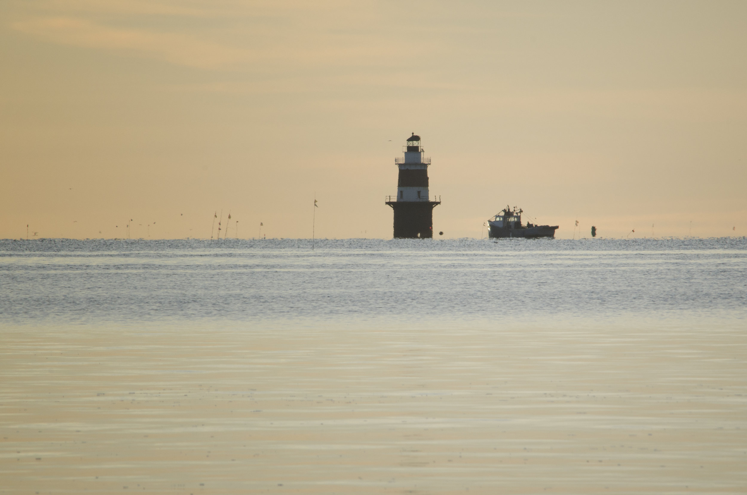 trawling-by-the-lighthouse_25733846870_o.jpg
