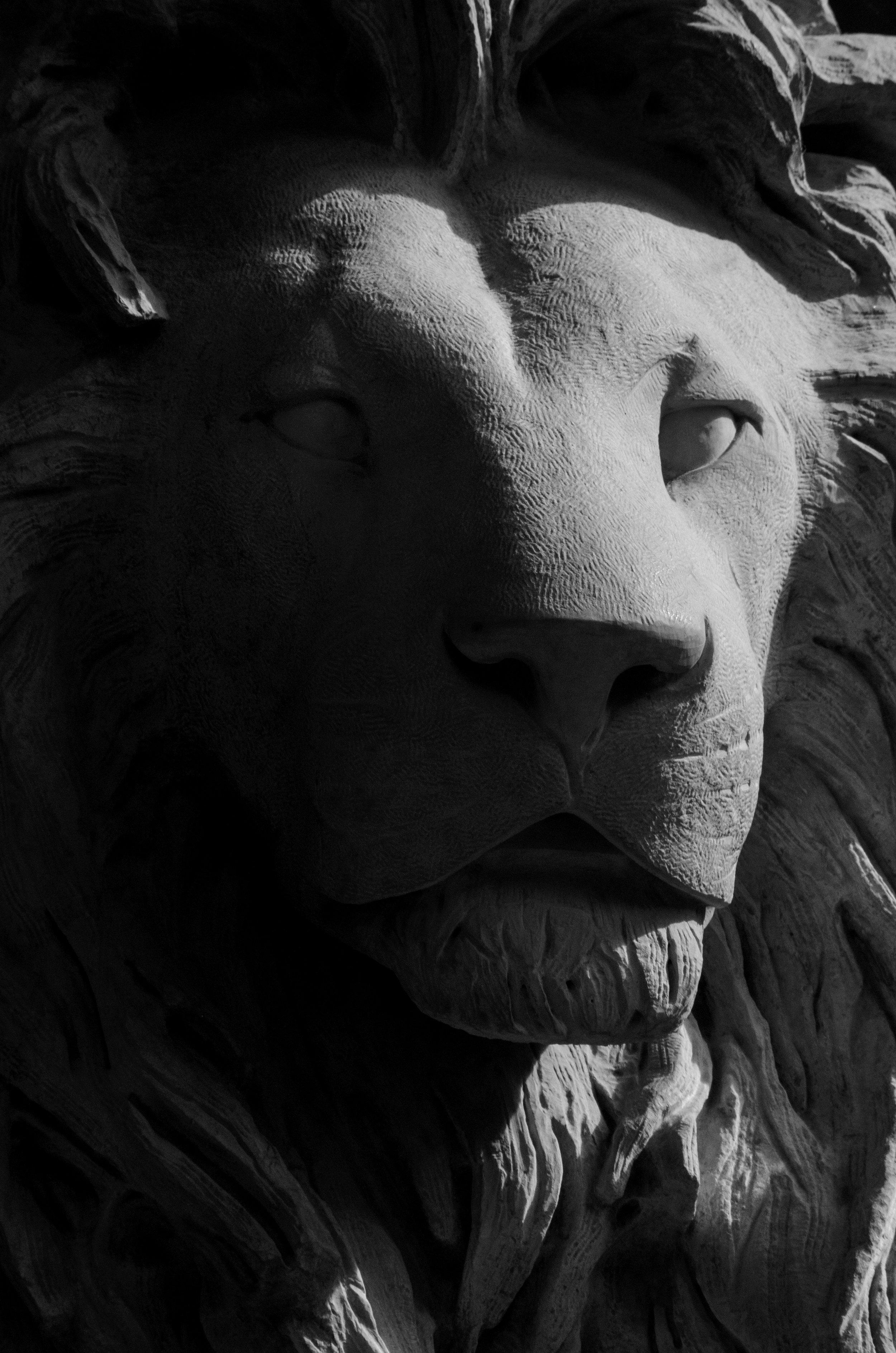 beasts-of-stone_36885327672_o.jpg