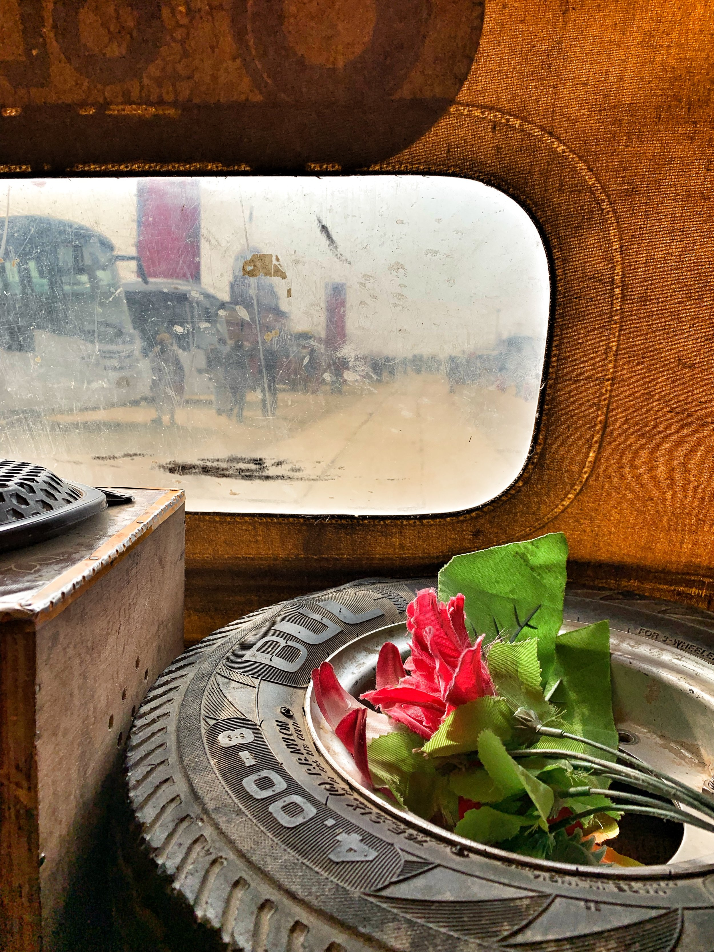 Flower perched on spare tire in the back of a tuk tuk.