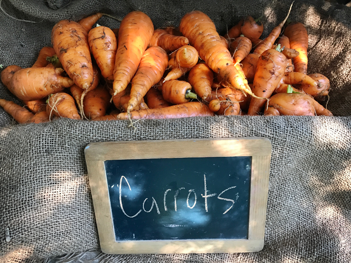 FarmStandCarrotsResized.jpg