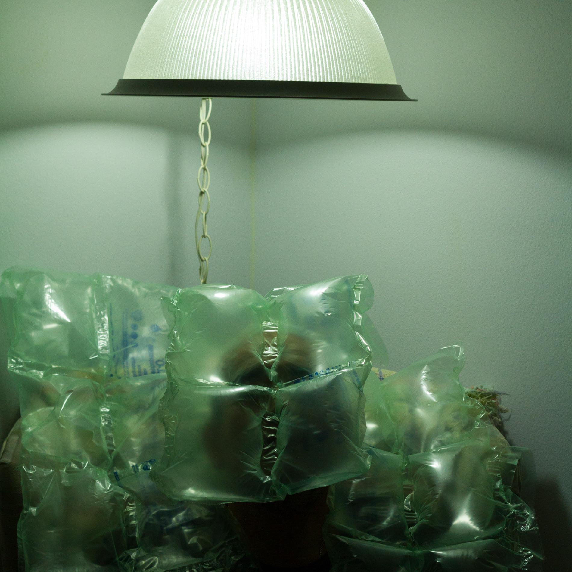 Liquid Night IR11.JPG