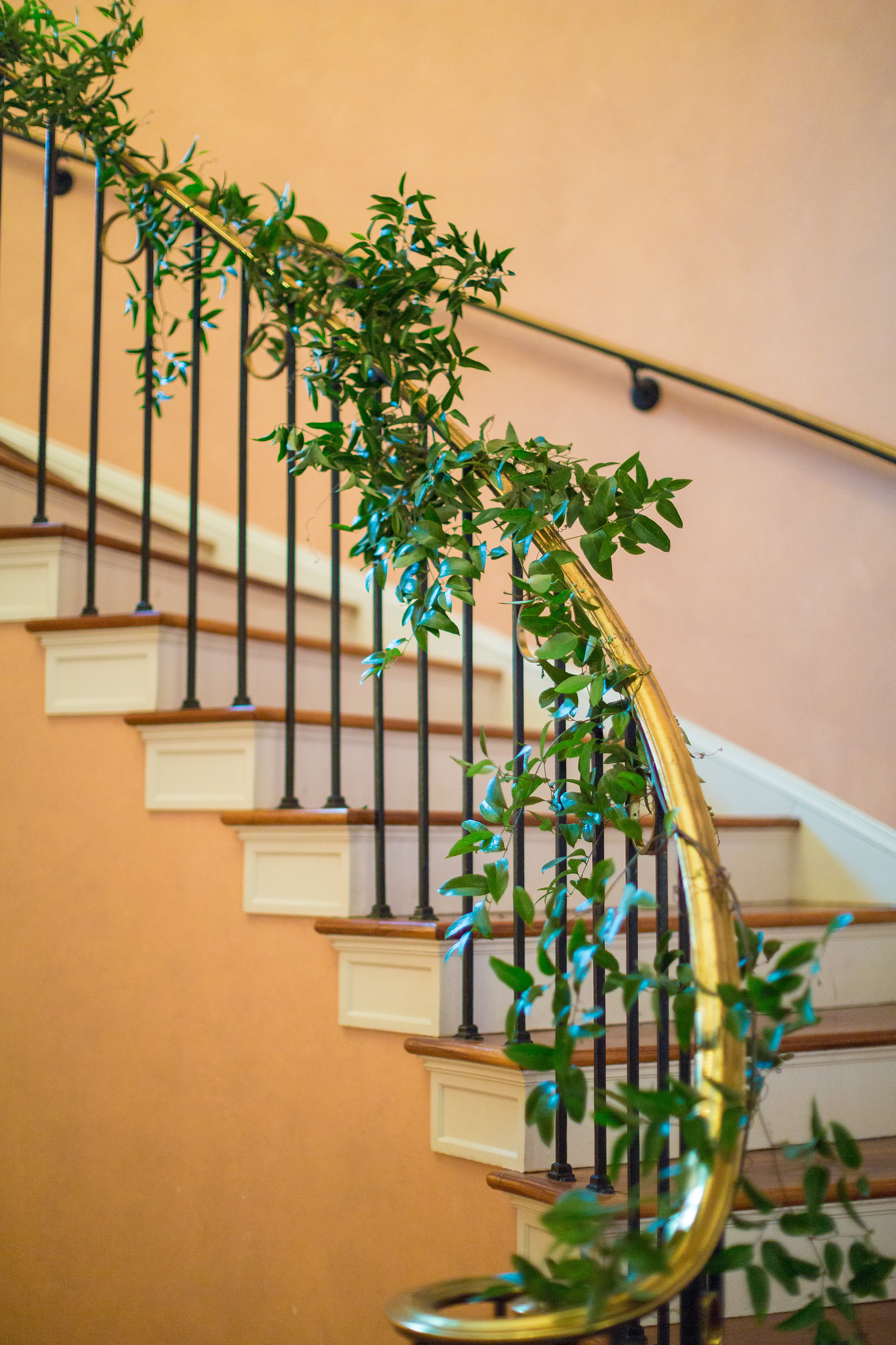A garland of smilax wound its way down the curved banister of the staircase.  The way that Brantwyn was transformed honestly made it seem like the house itself was growing flowers.
