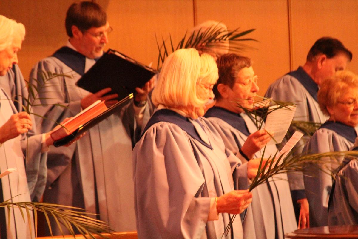 IMG_7134_choir-palms.png